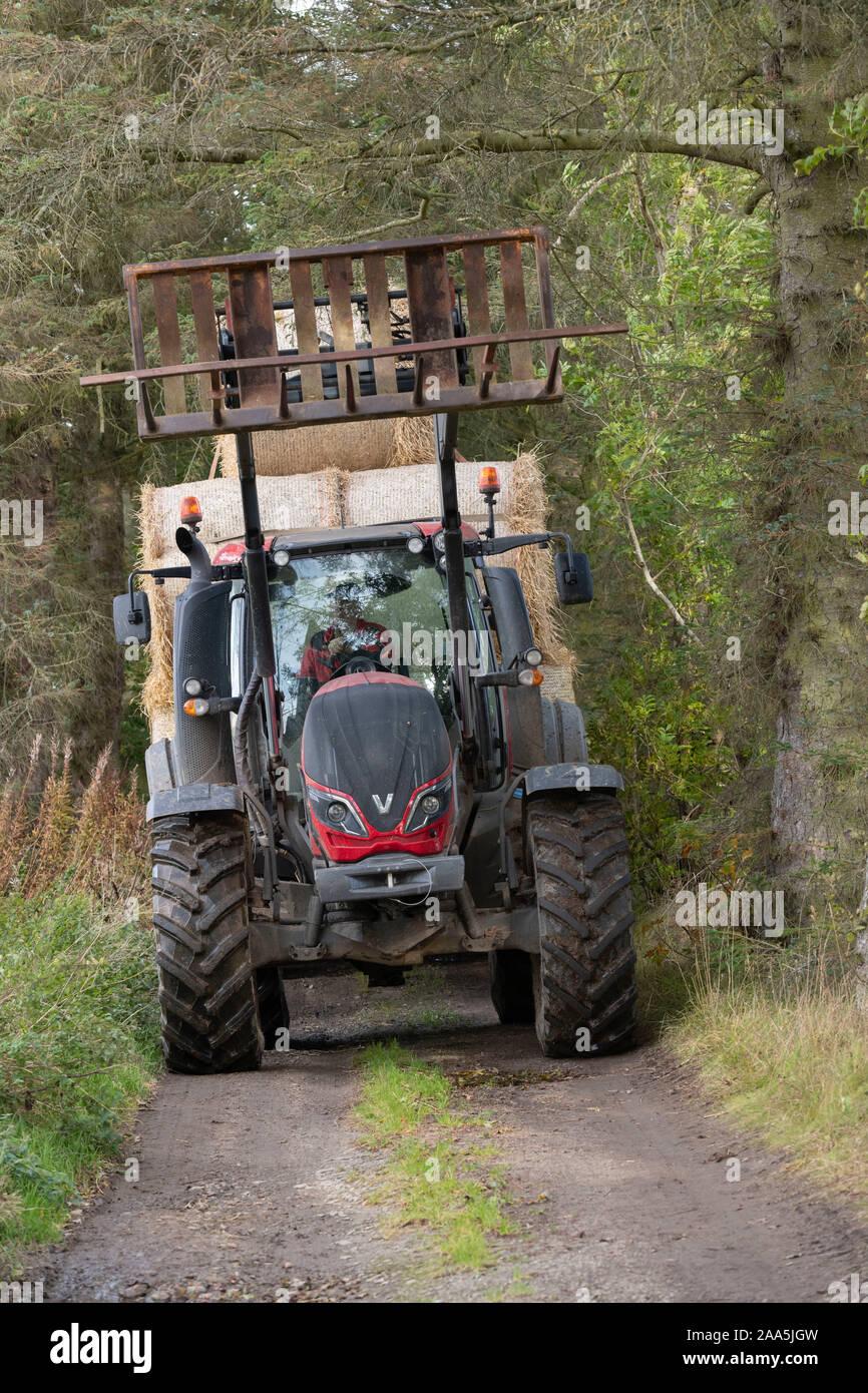 Un agricultor con un tractor y un remolque lleno de pacas de paja hace su camino a través de árboles que bordean una pista agrícola Foto de stock