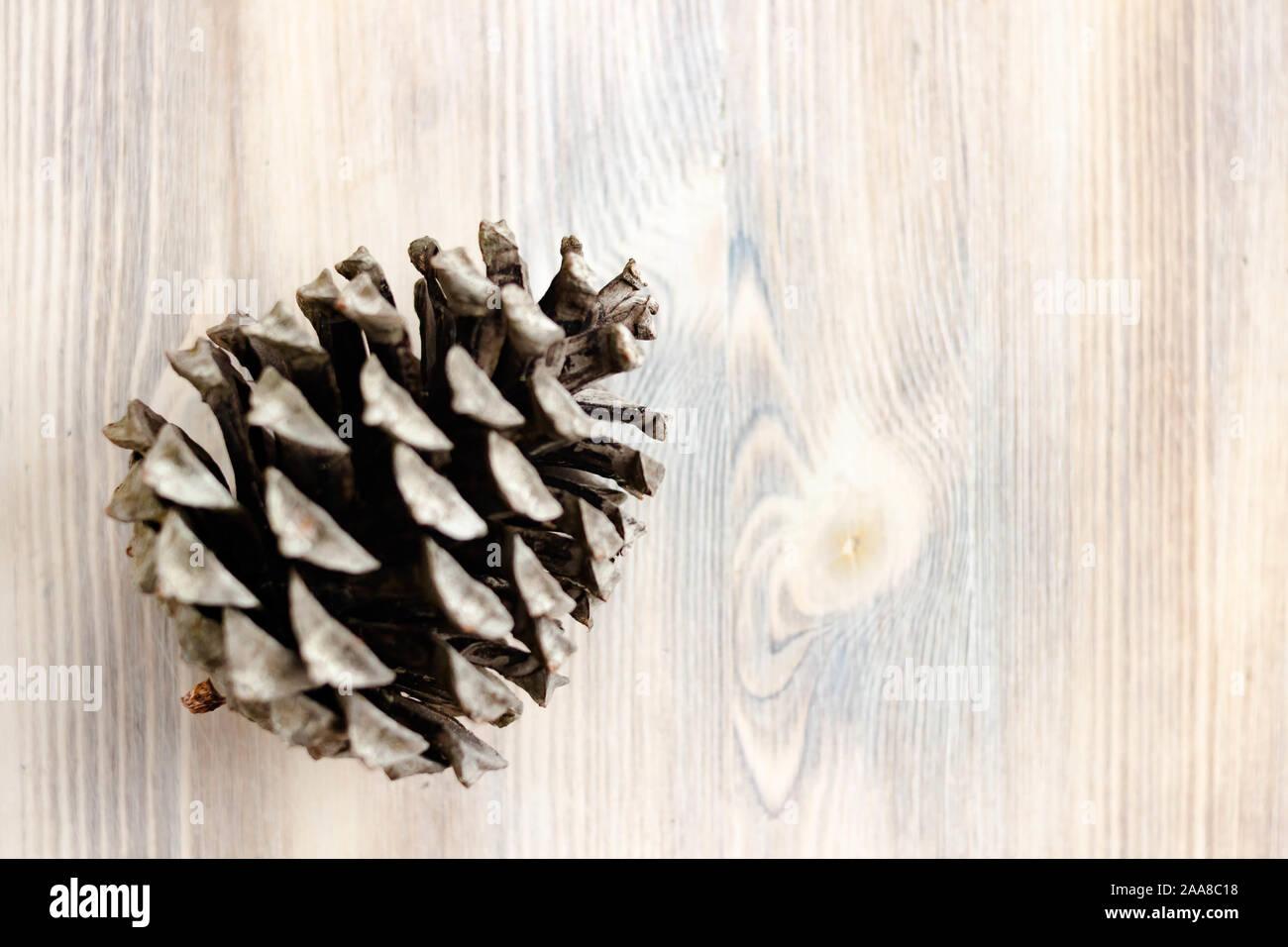Cono de pino en la luz natural de fondo de madera blanqueada. El concepto de sano comer alimentos orgánicos, vegetariana. Vista desde arriba. Desenfoque selectivo. Shal Foto de stock