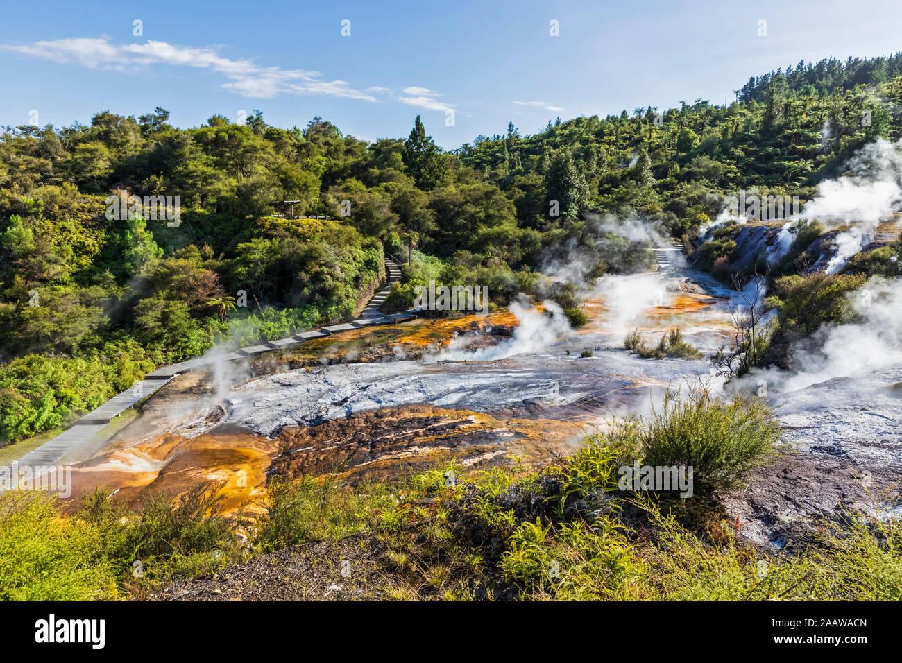 Terraza en cascada, Termas y algas y Esmeralda Terracettes Terraza, Orakei Korako Parque geotérmico, Zona Volcánica Taupo, Isla del Norte, Nueva Zelanda Foto de stock