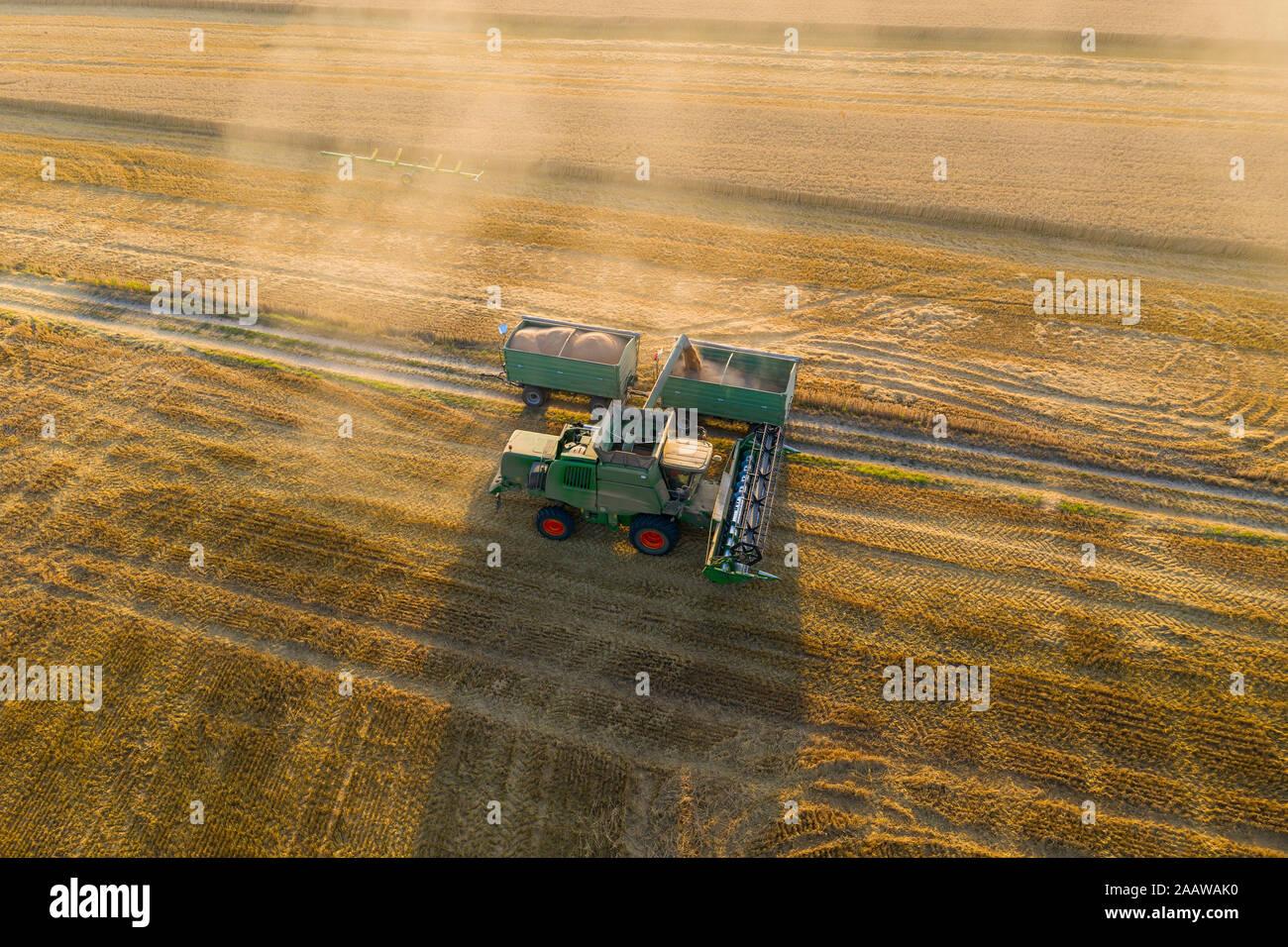 Vista aérea de la cosechadora en el campo agrícola durante la puesta de sol Foto de stock