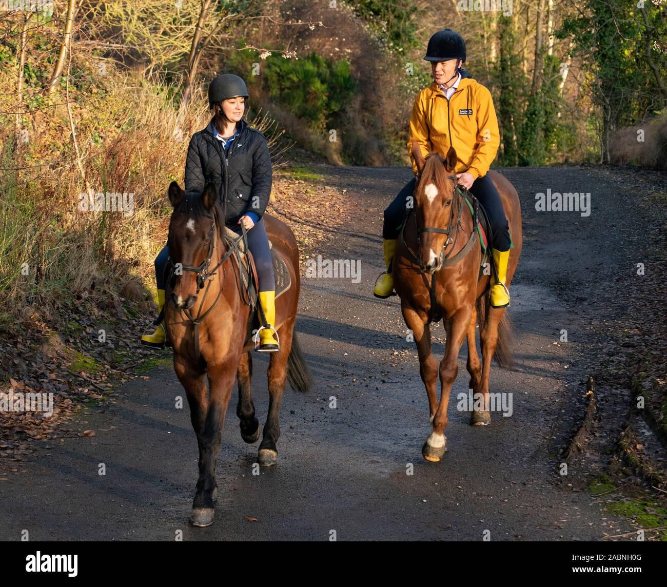 """Lasswade, Escocia, Reino Unido. El 28 de noviembre de 2019. Los liberales demócratas resaltar """"dos carrera de caballos en muchos escaños"""" en Lasswade escuela de equitación. El líder liberal demócrata escocés Willie Rennie y candidato de Berwickshire, Roxburgh & Selkirk, Jenny Marr, visitó el centro de equitación Lasswade para resaltar los liberlademócratas' lugar como principal competidor en muchos escaños en toda Escocia. Iain Masterton/Alamy Live News. Foto de stock"""