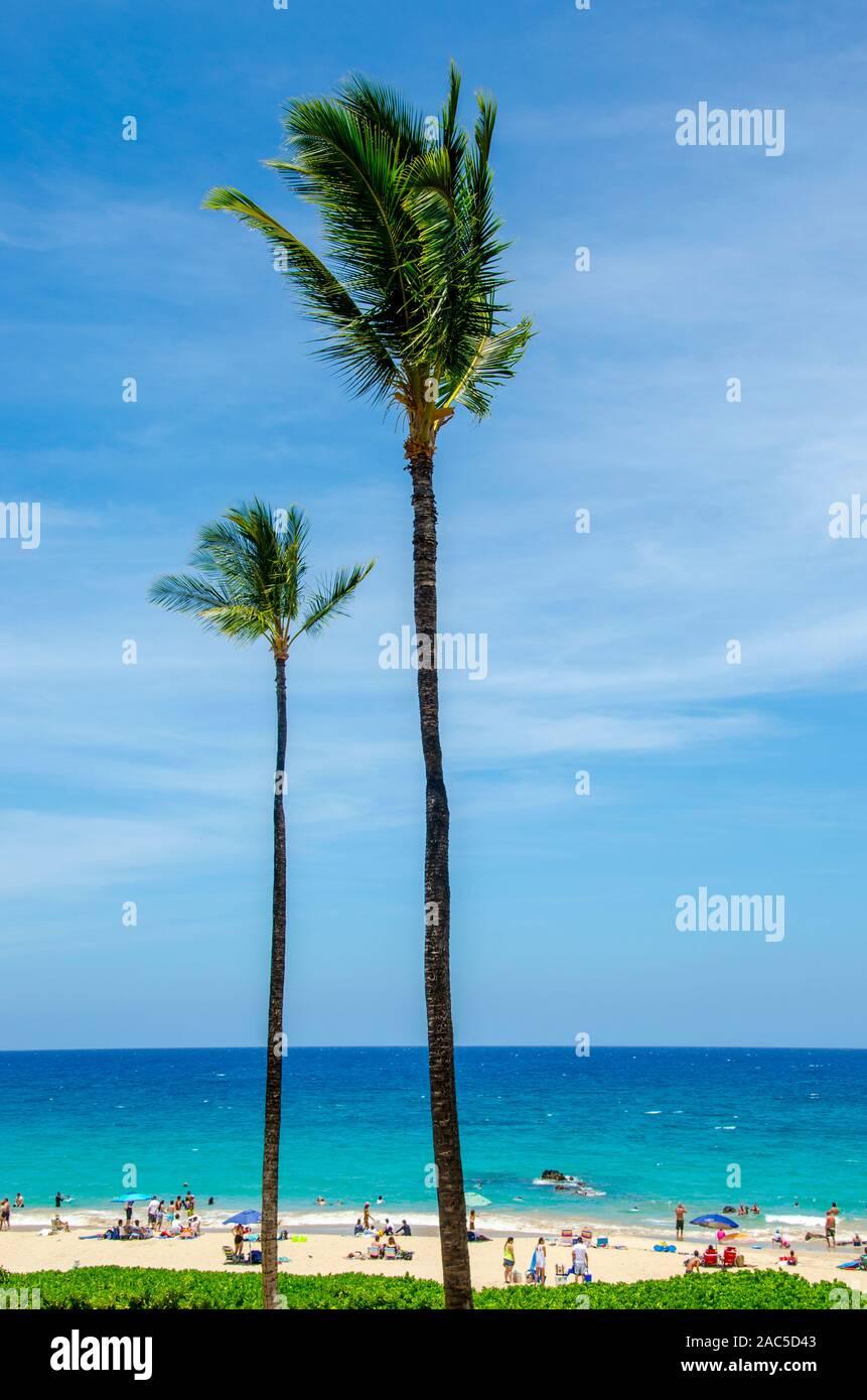 Gente disfrutando de un día soleado en el Hapuna Beach, a lo largo de la costa Kohala de la Isla Grande. Esta playa de arena blanca, ha sido calificada como una de las mejores playas de la Foto de stock