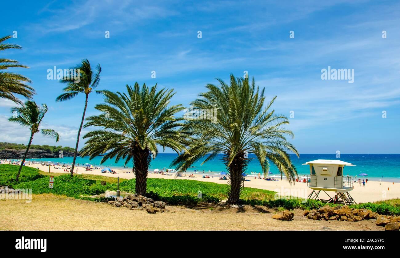 Multitud de beachgoers en Hapuna Beach, a lo largo de la costa Kohala de la Isla Grande. Esta playa de arena blanca, ha sido calificada como una de las mejores playas del mundo ti Foto de stock