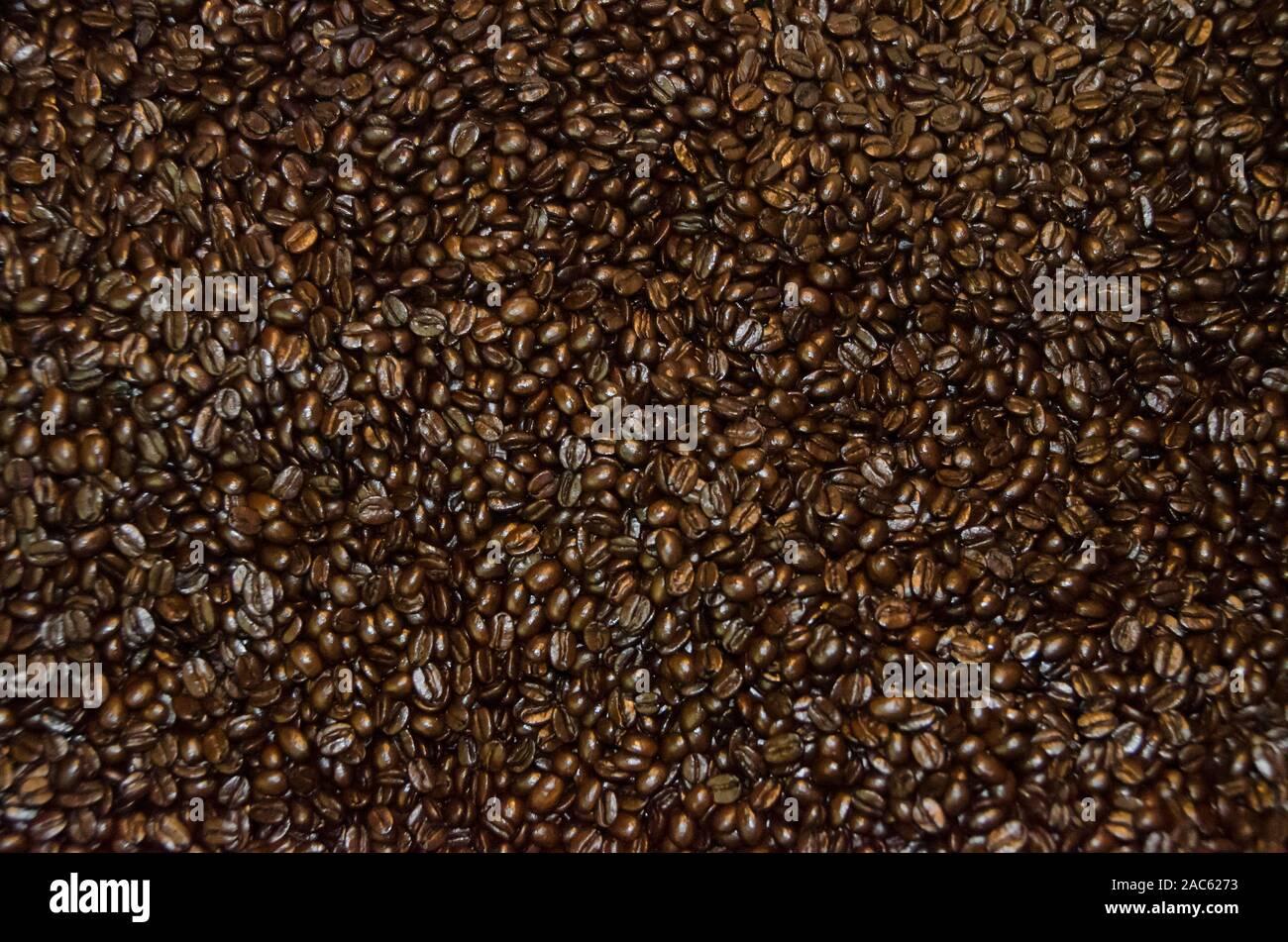 Café tostado en grano en el proceso de enfriamiento, de Kaleo Koffee, Pua'a Kea Farm, Pa'auilo, Costa Hamakua, Isla Grande. Foto de stock