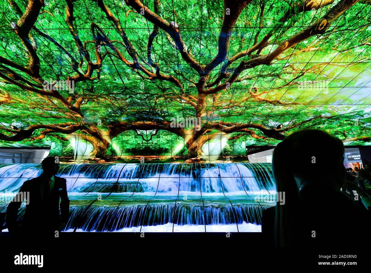 OLED curvo Fernseher von LG, Internationale Funkaustellung, Berlín 2019, Deutschland Foto de stock