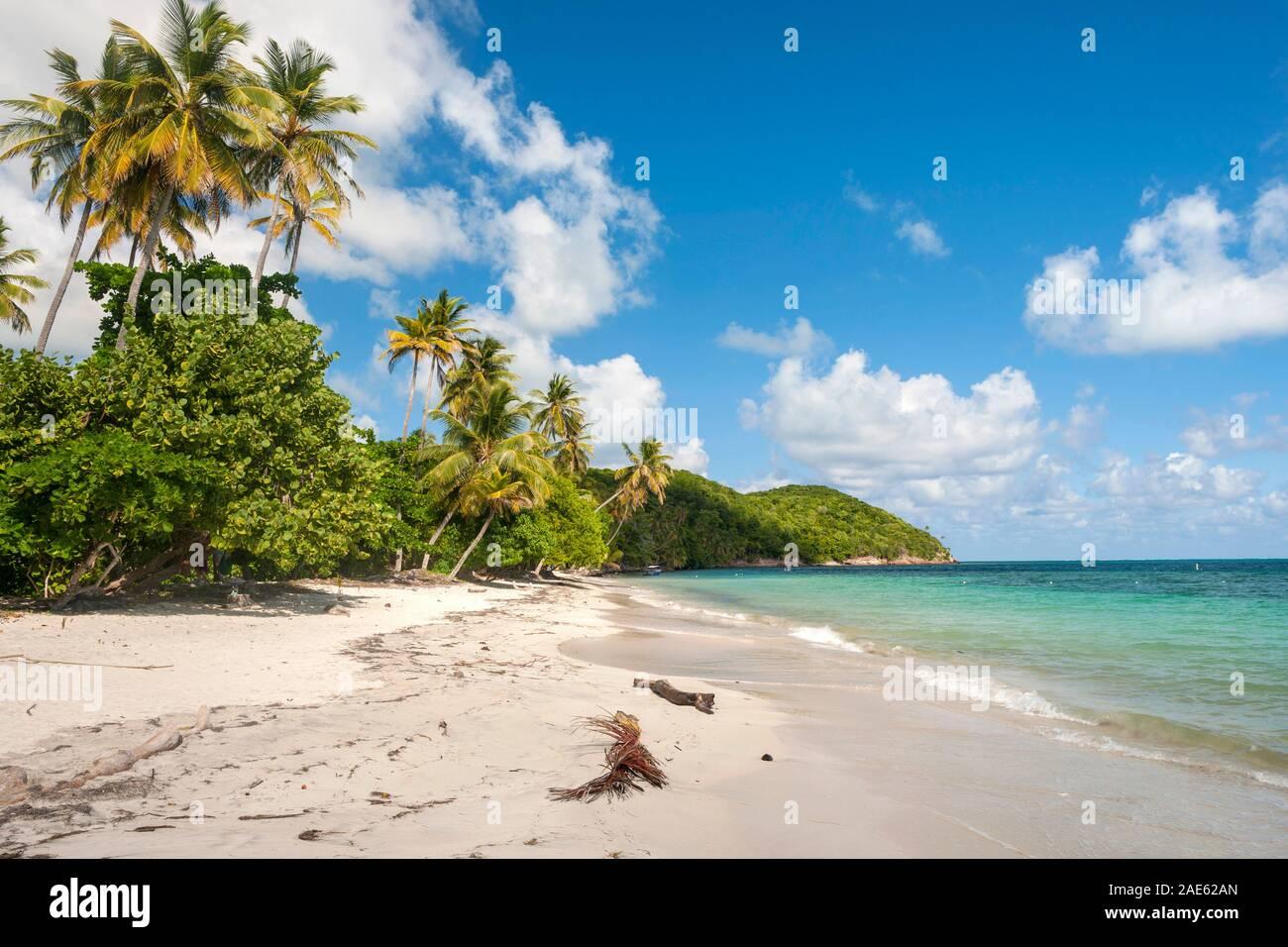 Manzanillo Beach en la isla de Providencia en Colombia. Foto de stock