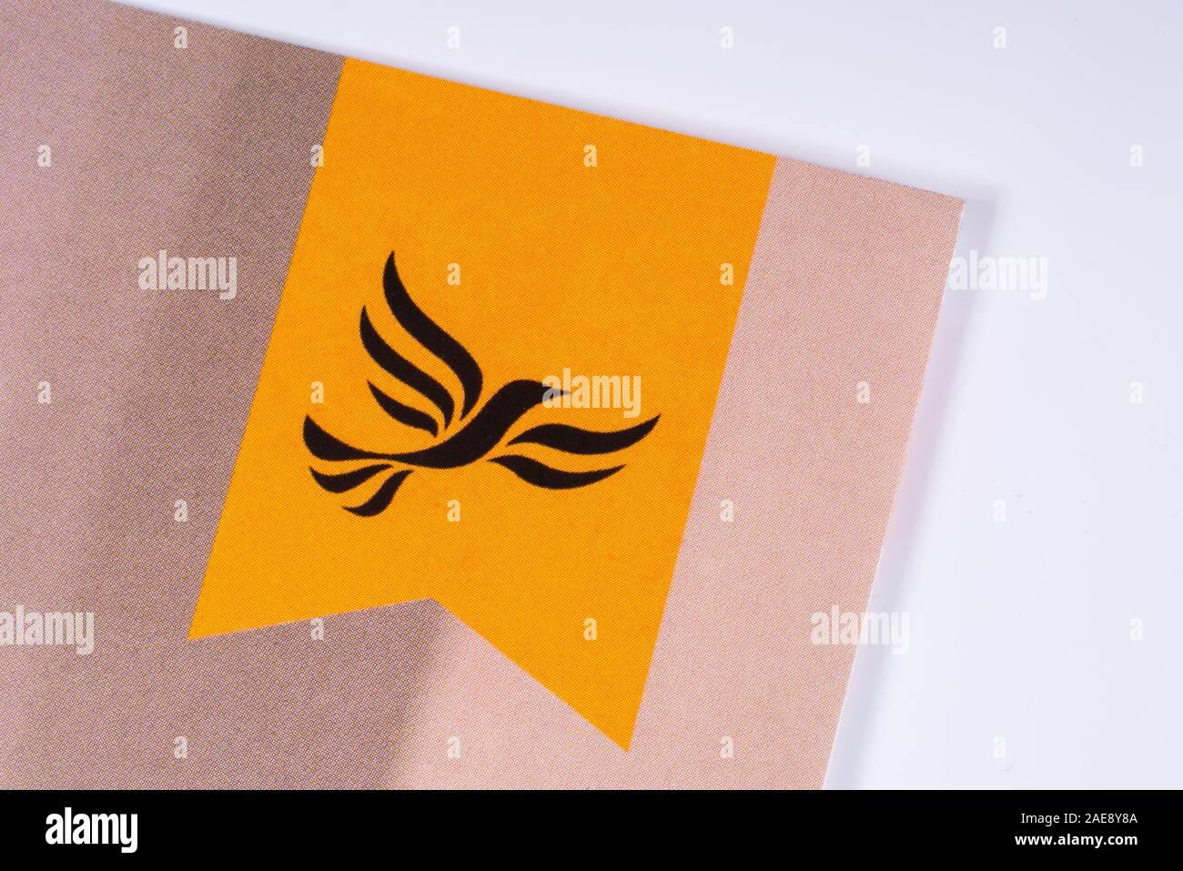 Partido Laborista logotipo Botón Insignia-Reino Unido elecciones generales 2017-4 Tamaños rosa