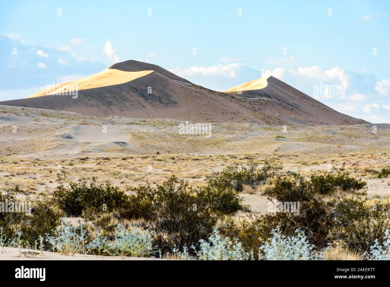Luz dorada en Kelso Dunas al atardecer en el desierto de Mojave, el Mojave National Preserve, California, EE.UU. Foto de stock