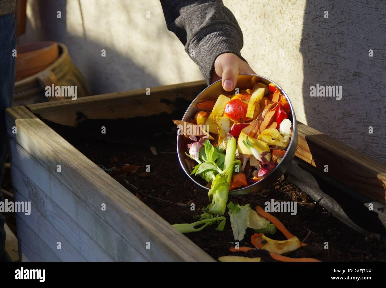 Suministro de compost ecología - Reciclaje de residuos de cocina en el patio de compostaje. Estilo de vida respetuoso con el medio ambiente. El hombre genera sobras de verduras de th Foto de stock