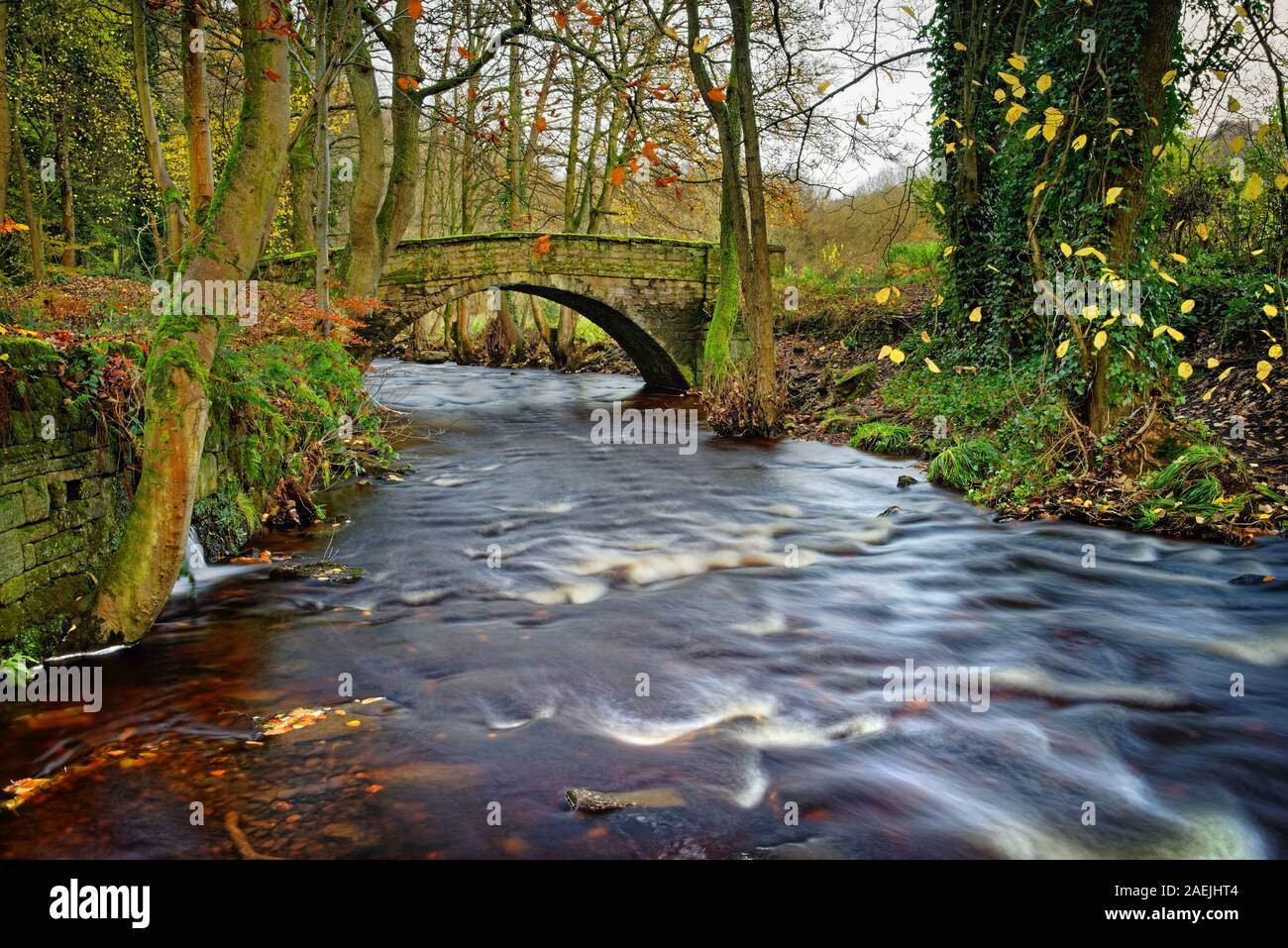 Reino Unido,South Yorkshire,Sheffield,Río Rivelin & Roscoe Puente en otoño Foto de stock