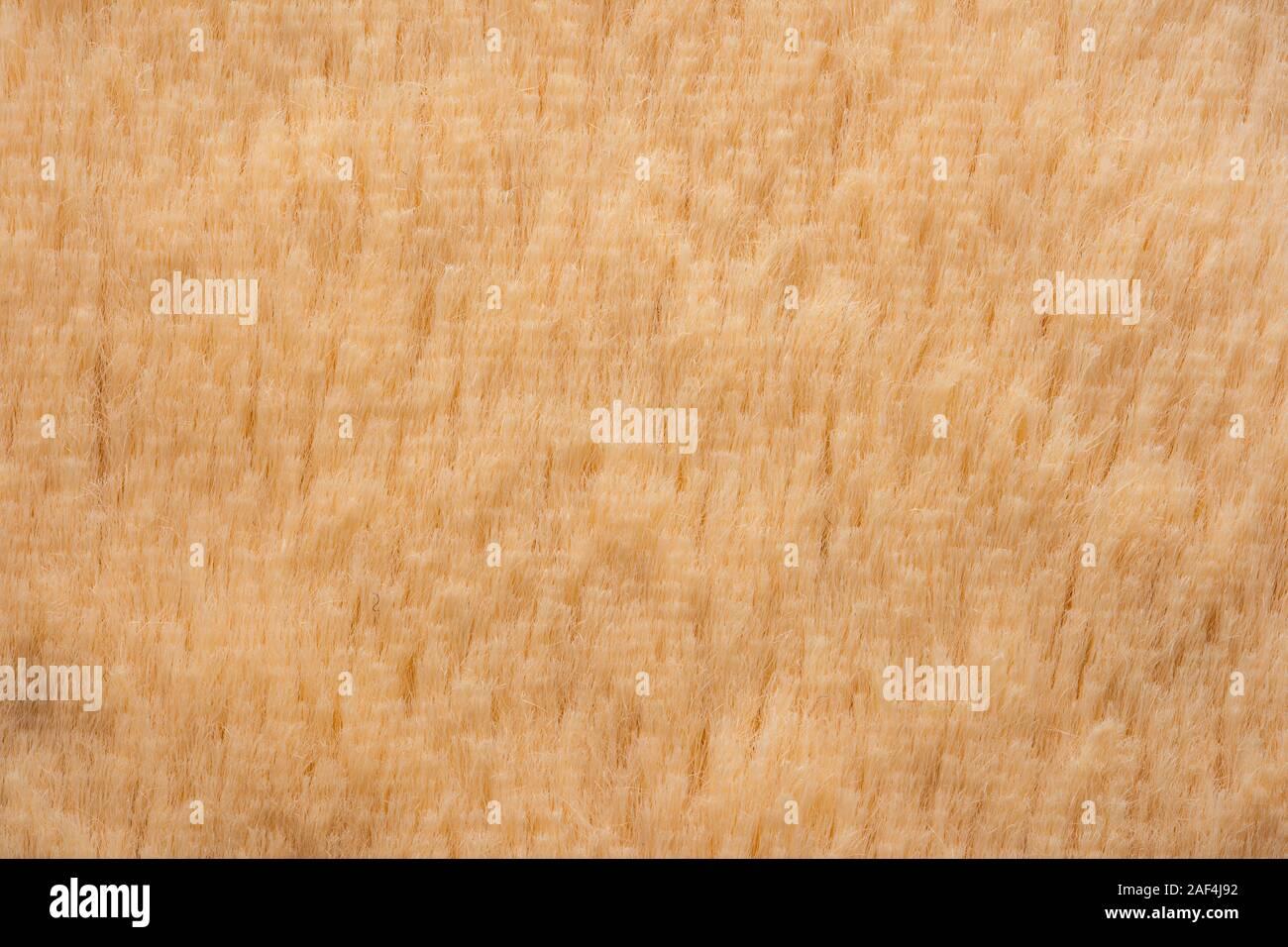 Piel falsa textura de fondo de cierre Foto de stock