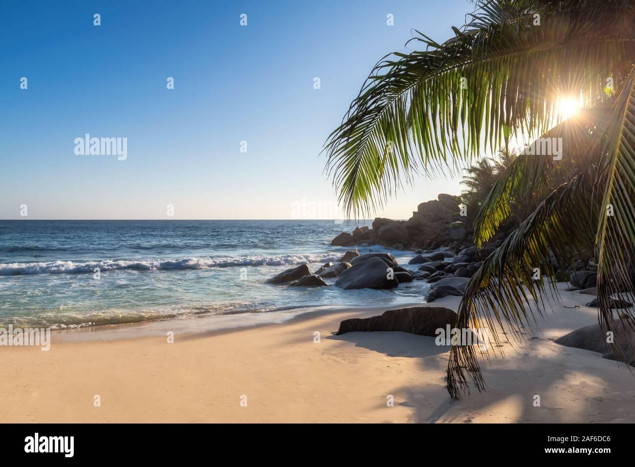 Atardecer en la playa tropical exótica Foto de stock