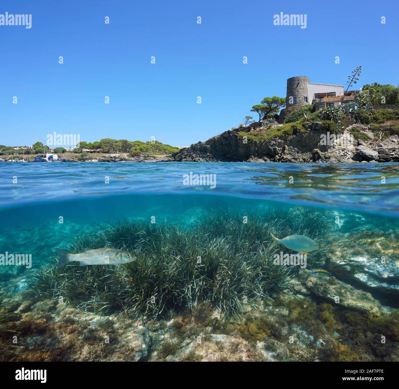 España costa mediterránea con una casa en Cadaqués y lechos marinos con peces mar subacuáticos, vista dividida por encima y por debajo de la superficie del agua, Costa Brava Foto de stock