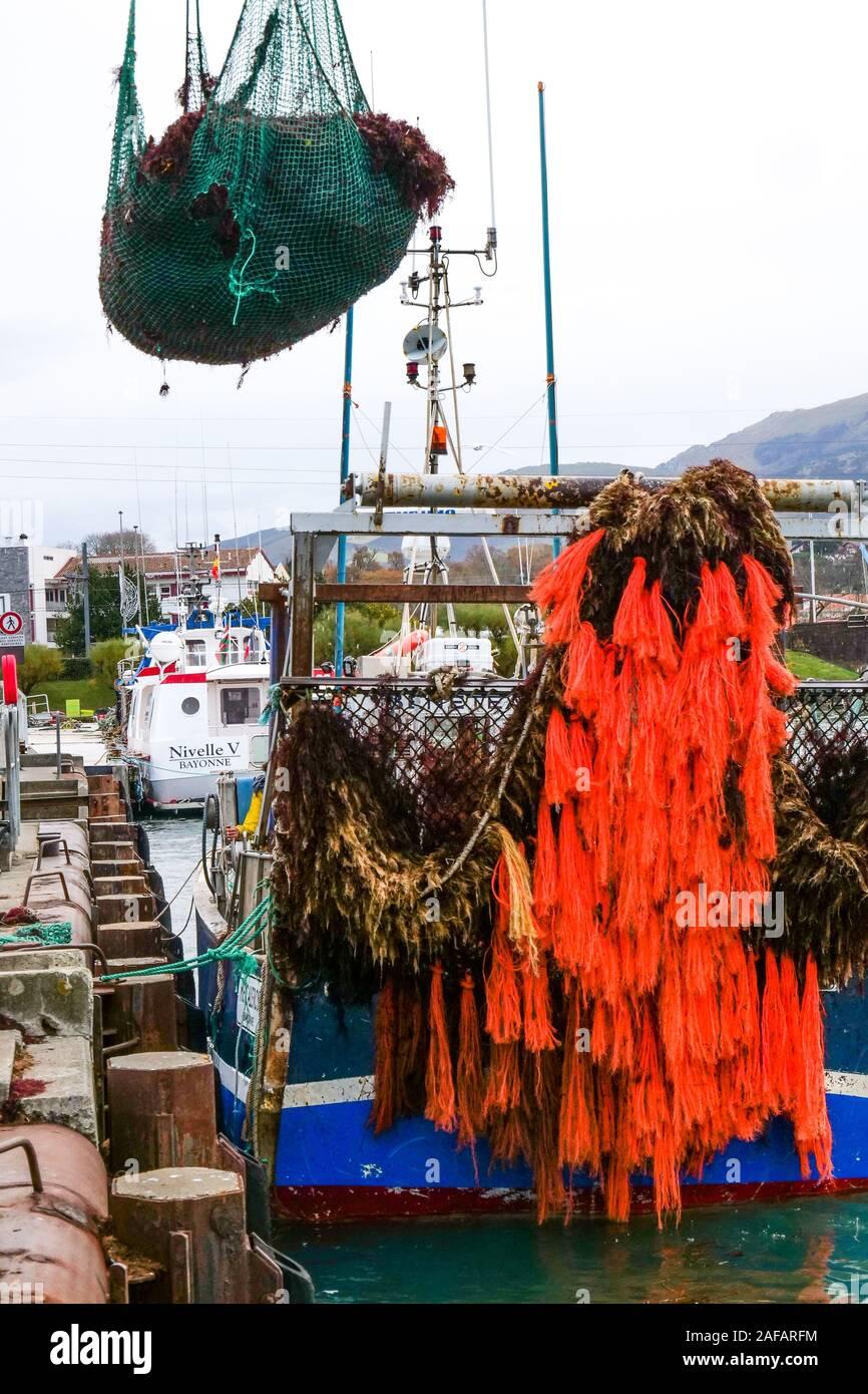 La descarga de algas rojas, puerto pesquero de Saint-Jean de Luz, Pirineos Atlánticos, Francia Foto de stock
