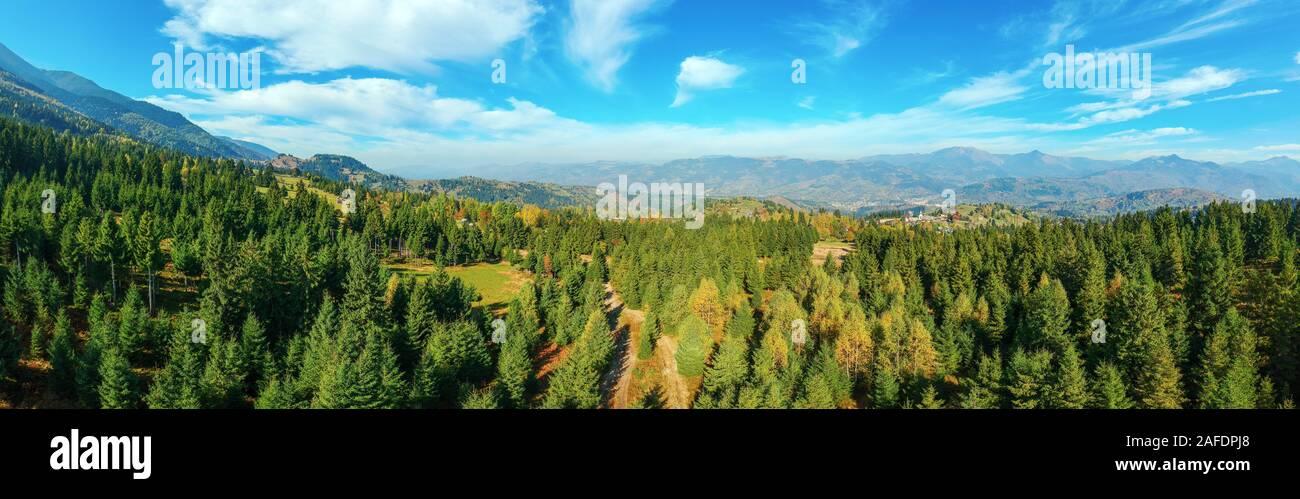 Vistas panorámicas aéreas de una región rural con bosques de pino y la cordillera de los Cárpatos en el fondo en un día soleado. Maramures, Rumania. Foto de stock