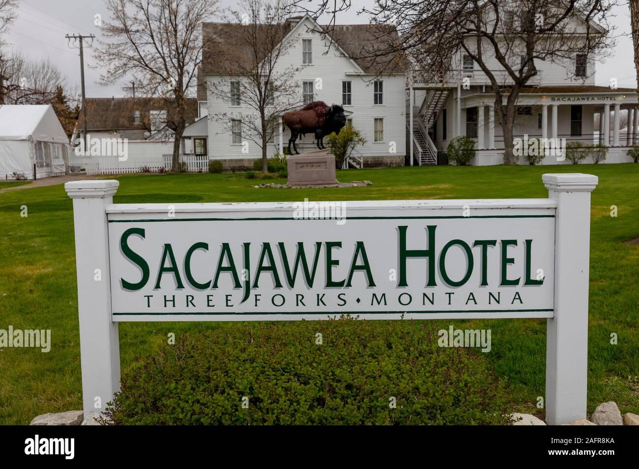 El 23 de mayo de 2019, tres horquillas, MT, ESTADOS UNIDOS - Búfalo en frente de Sacajawea Hotel, tres horquillas, Montana honores Sacajawea y la expedición de Lewis y Clark Foto de stock
