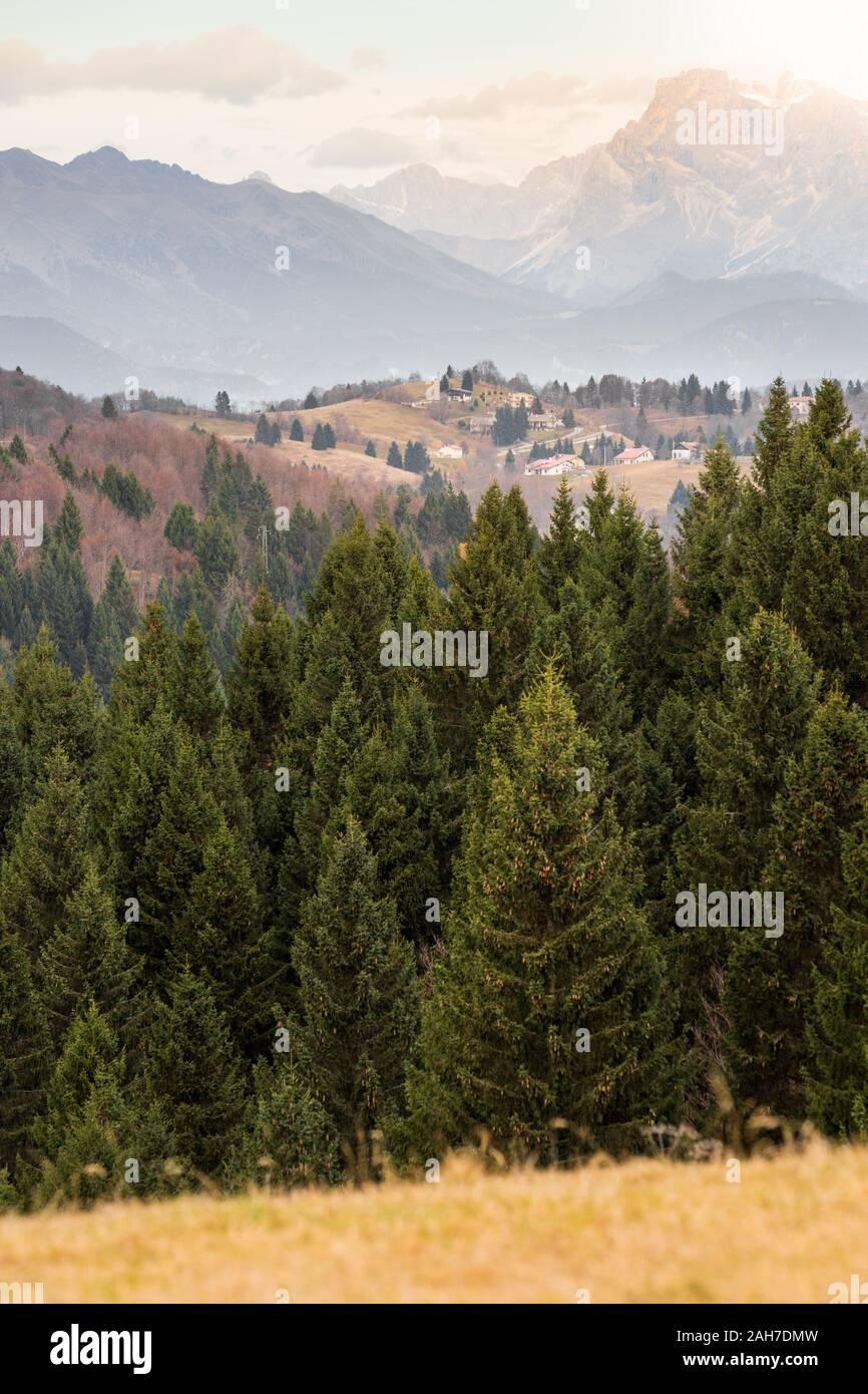 Icónico paisaje montañoso italiano, con un bosque de pinos en el primer plano, los Alpes en la distancia, y un pequeño pueblo en medio Foto de stock