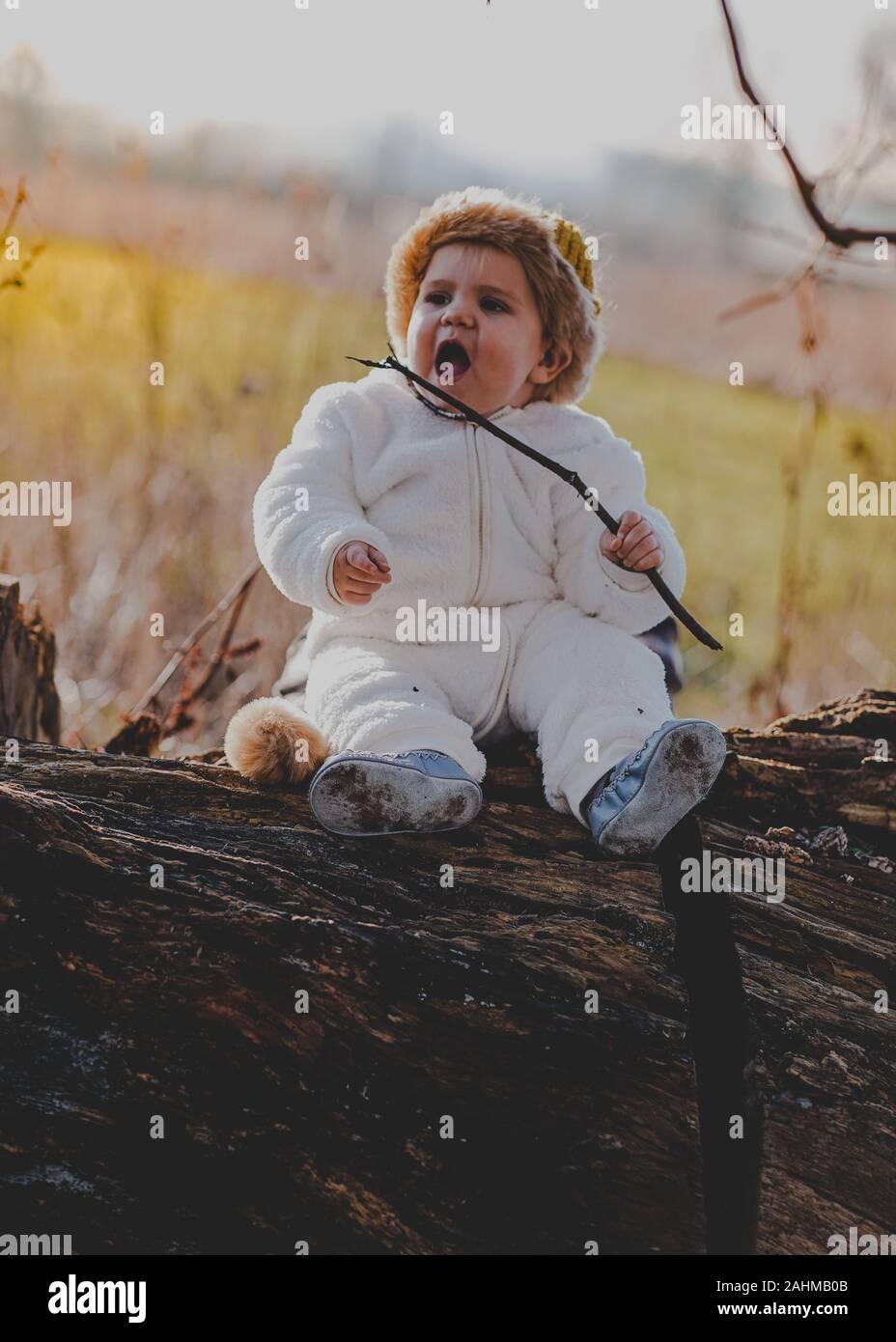 Chico vestido como Max desde donde están las cosas salvajes en los bosques Foto de stock