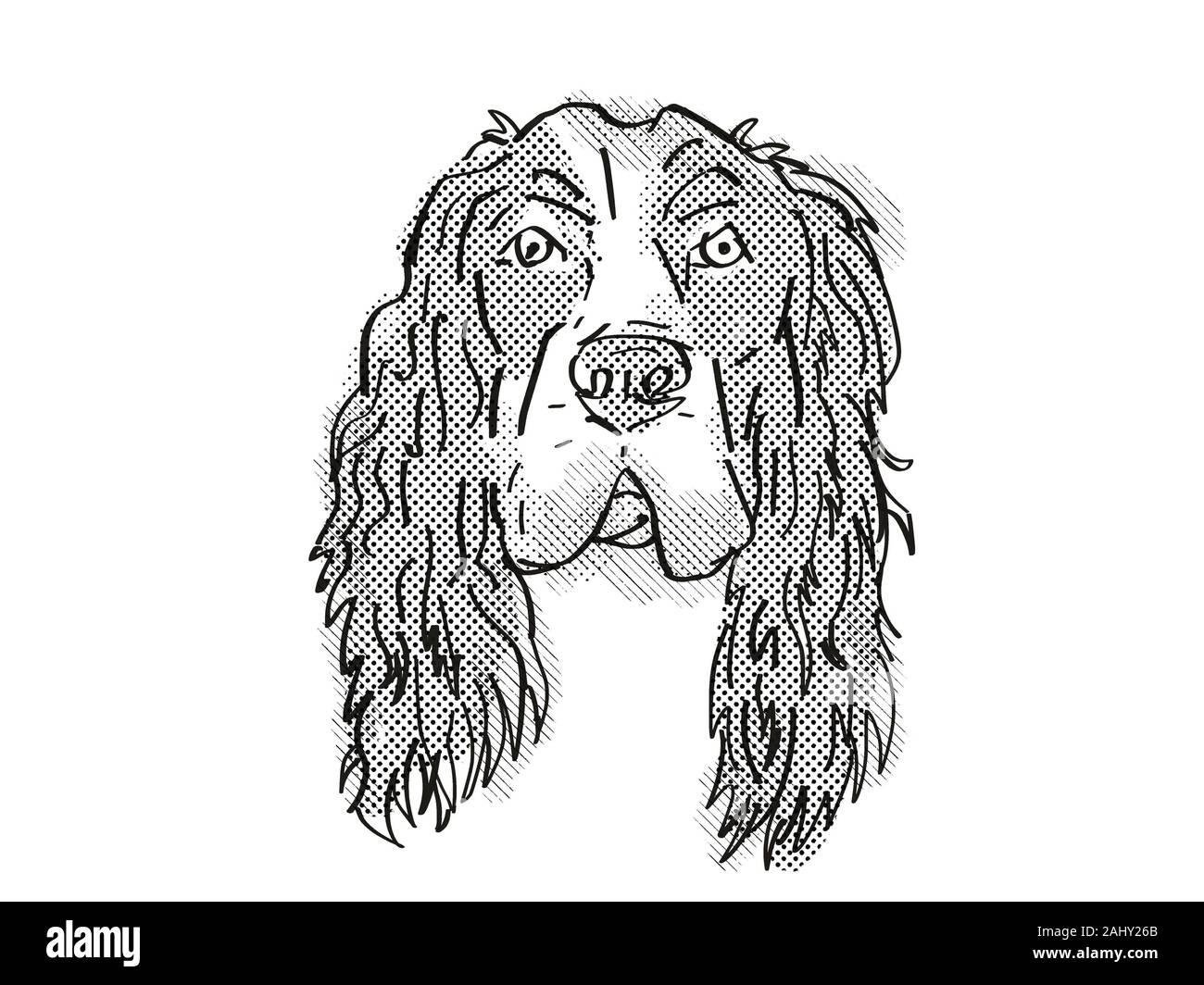 Estilo de dibujos animados Retro el dibujo de la cabeza de un Cocker Spaniel Inglés, un perro doméstico o de raza canina sobre fondo blanco aislado realizado en blanco y negro. Foto de stock