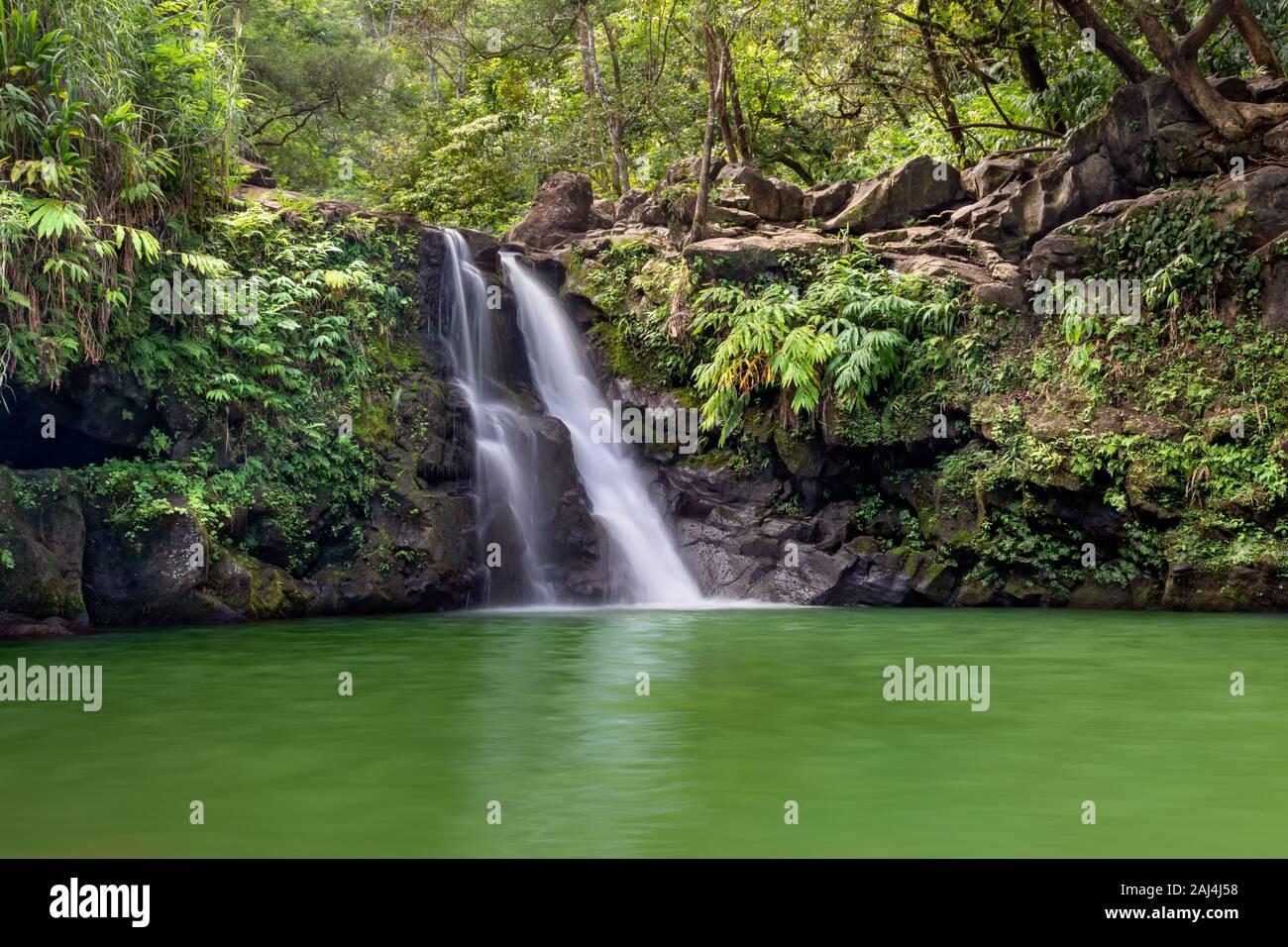 Exuberante y verde Waikamoi cae en Maui, HI a lo largo de la carretera a Hana con una gran piscina para nadar Foto de stock