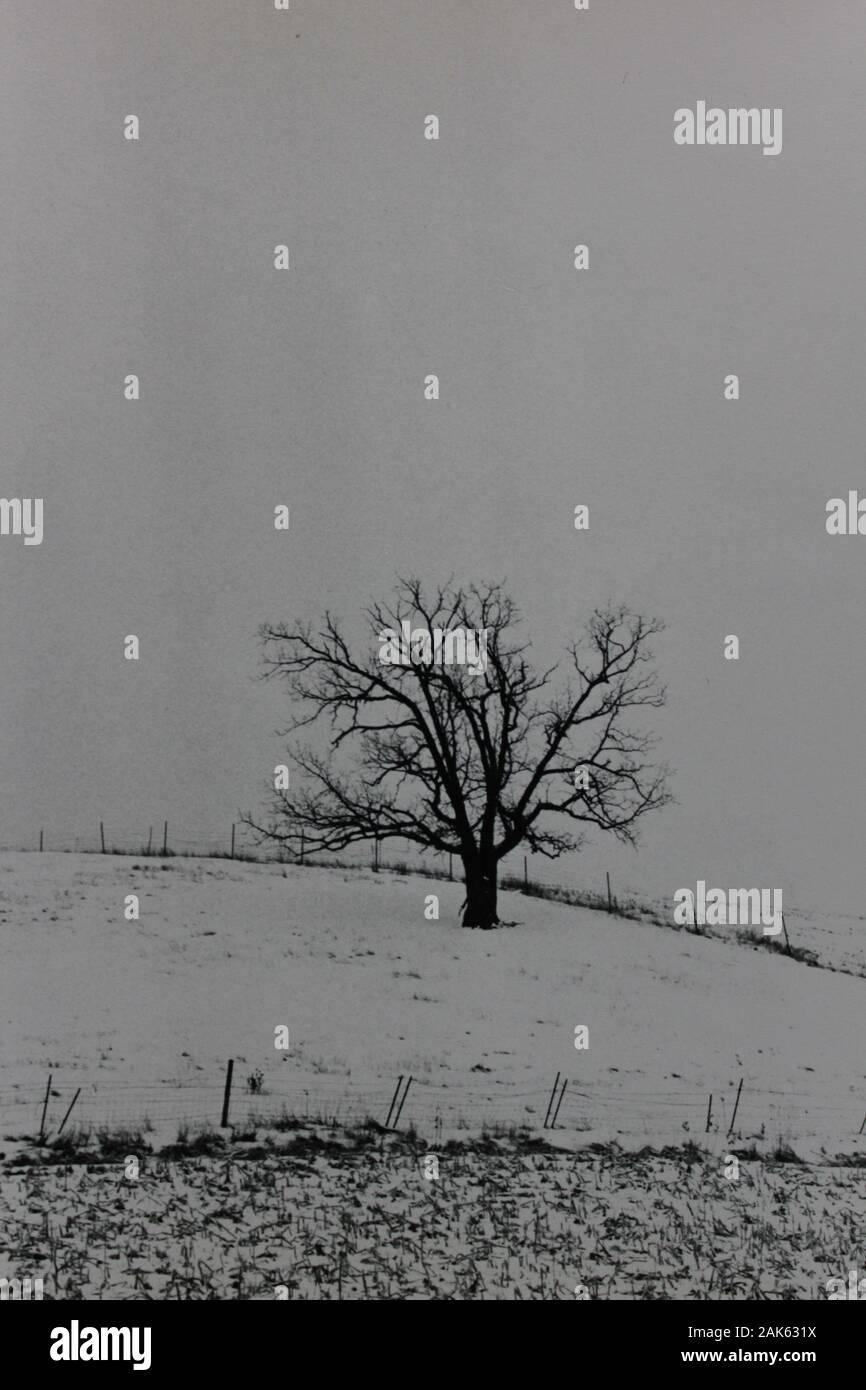 Minimalismo de los años setenta fotografía vintage en blanco y negro de un campo vacío Foto de stock