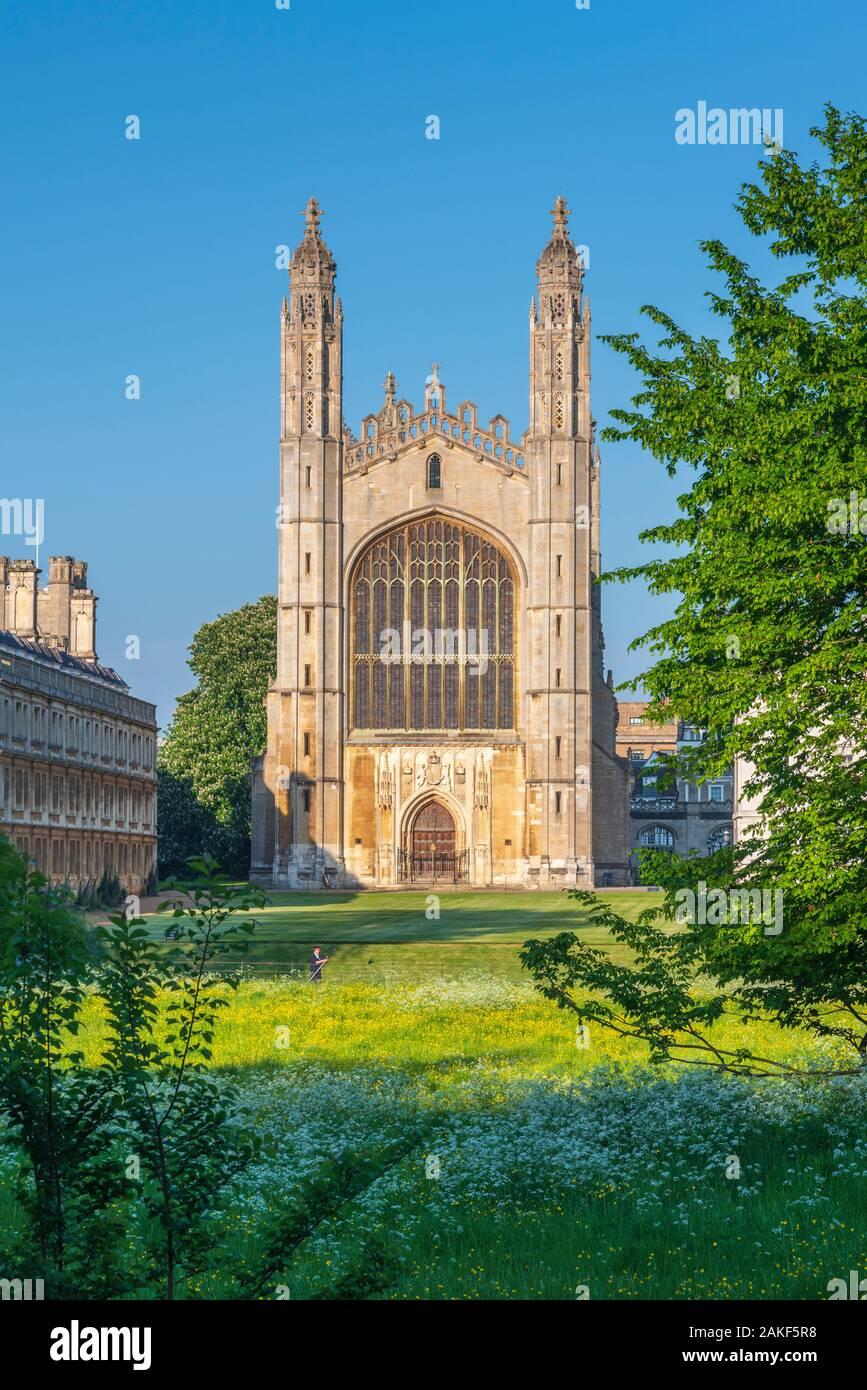 Reino Unido, Inglaterra, Cambridgeshire, Cambridge, la espalda, el King's College, la Capilla de King's College Foto de stock