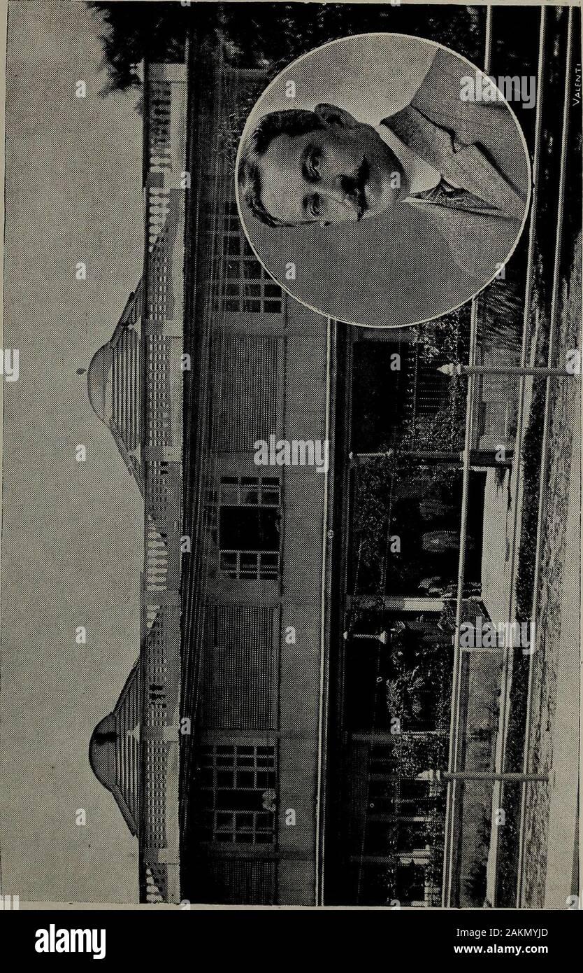 El Salvador al vuelo; notas, impresiones y perfilesRepublica de El Salvador, América Central, 1917 . Foto de stock