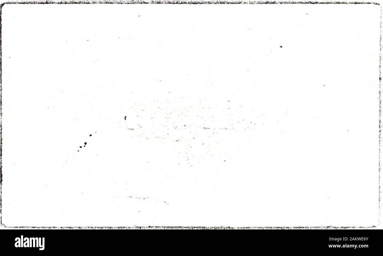 [Publications] . [No. LVII.] CONSEJO DE LA CAMDEN SOCIETY PARA EL AÑO 1852-3. Presidente, el derecho de Hon. LORD BRAYBROOKE, F.S.A. WILLIAM HENRY BLAAUW, Esq. A. A. F.S.A.JOHN BRUCE, Esq. Treas. S.A. Director.John Payne COLLIER, ESQ. V.P.S.A. Tesorero.C. PURTON Cooper, Esq. Q.C., D.C.L., F.R.S., F.S.A.WILLIAM DURRANT Cooper, Esq. F.S.A.BOLTON CORNEY, Esq. M.R.S.L.WILLIAM RICHARD DRAKE, Esq. F.S.A.SIR HENRY ELLIS, K.IL, F.R.S., Sec. S.A.EDWARD FOSS, Esq. F.S.A.EL REV. JOSEPH F.S.A.Hunter, el rey. LAMBERT B. LARKING, M.A..PETER Levesque, Esq. F.S.A.FREDERIC OUVRY, Esq. F.S.A. El RT. HON. Señor V Foto de stock