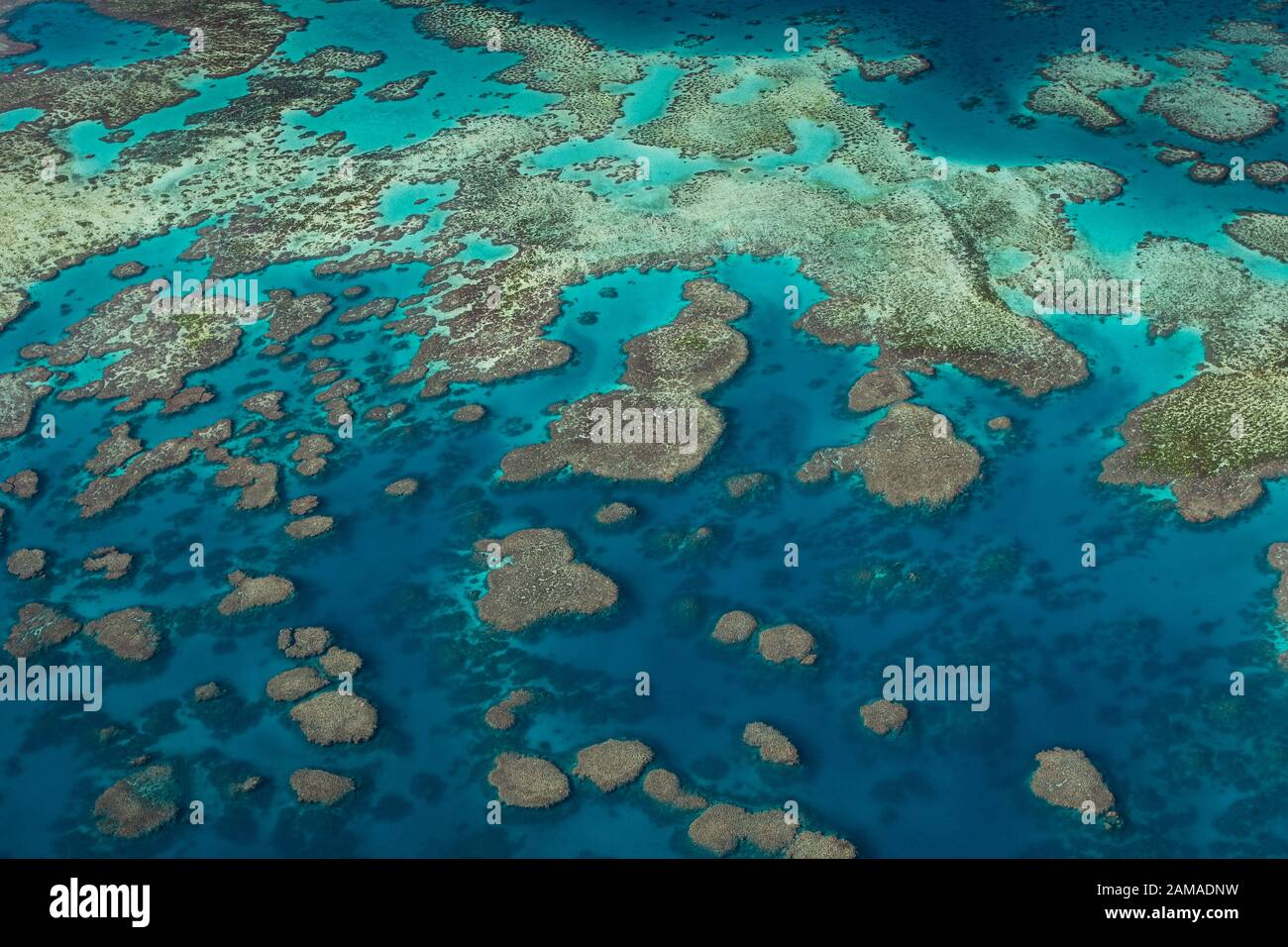 Toma aérea de la famosa Gran Barrera de Coral. Foto de stock