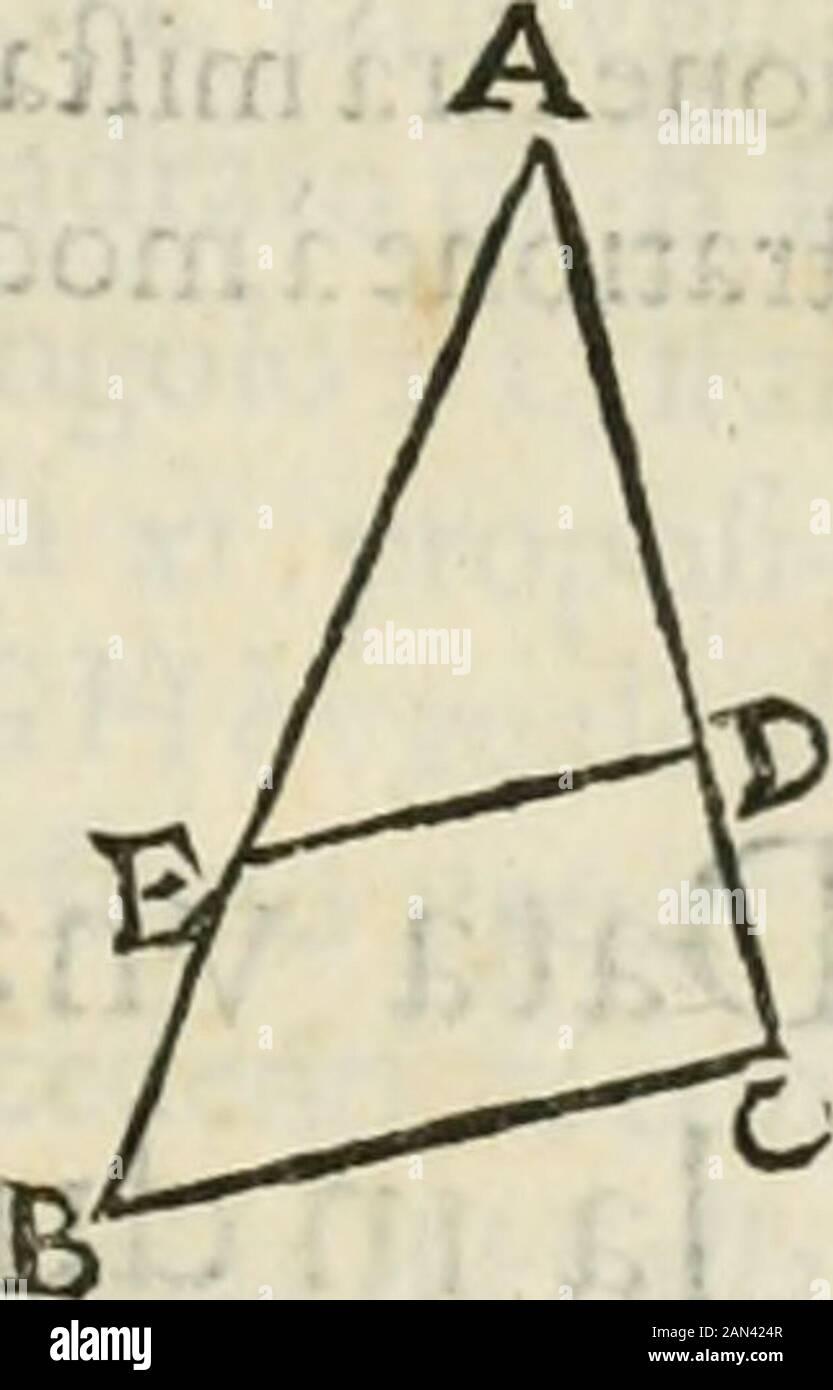 Modo del dividendo l'allvvioni da qvello di Bartolo, et de gli agrimensori diversoMostrato con ragioni matematiche & con pratica . : Venga i triangoli ABC, & A C D, & i paradiogrammi E C, & dal paralelogrammo E C al Bparalelogrammo C F. I I. I Che qualfiuoglia triangolò fegato convna linea equidiftante à qualuoglialato , che i Iati dei fegamento fiano proporcali . Ven che il triangolo ABC legato dalla li-nea D E equeidillante alla B C, la proportio-ne dell A E alla E B Ga, come dall A D alia D C :& quella è nota, eflendo la feconda propoita di-mollrata da Euclide nel fèllo libro. Del di Foto de stock