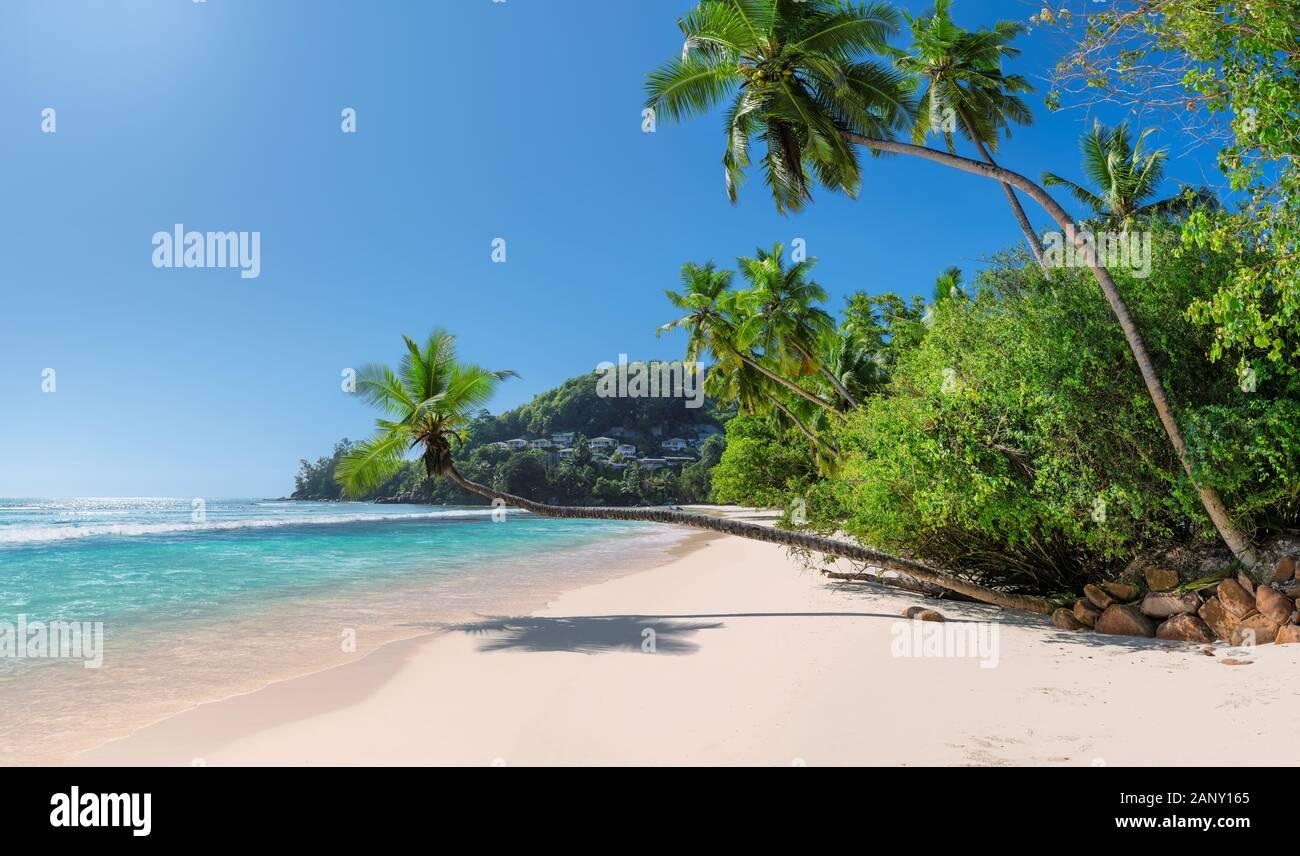 Sunny Beach Paradise en isla tropical Foto de stock