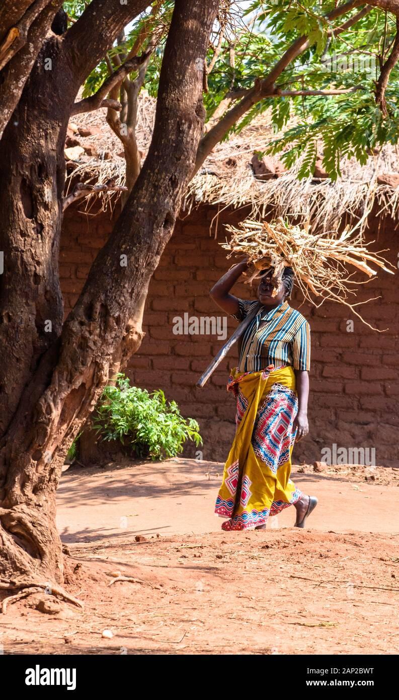 Mujer Cargando Lena En La Cabeza Fotos E Imagenes De Stock Alamy