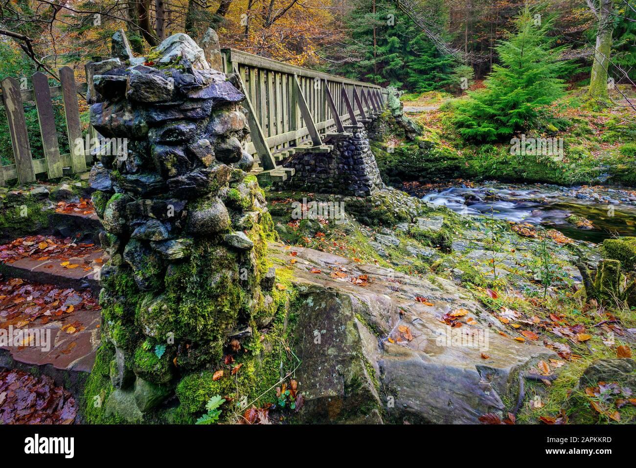Pilares de piedra y escalones de viejo puente de madera con rocas de musgo en Tollymore Forest Park en otoño, Newcastle, County Down, Irlanda del Norte Foto de stock
