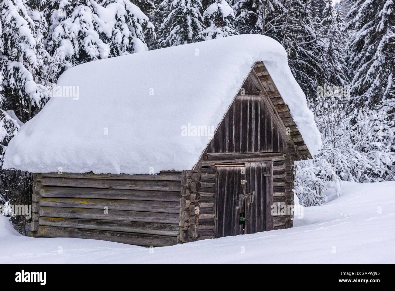 Cobertizo de madera, con el telón de fondo de montañas y árboles nevados. Paisaje alpino de invierno en Austria. Fondo hermoso y natural. Foto de stock