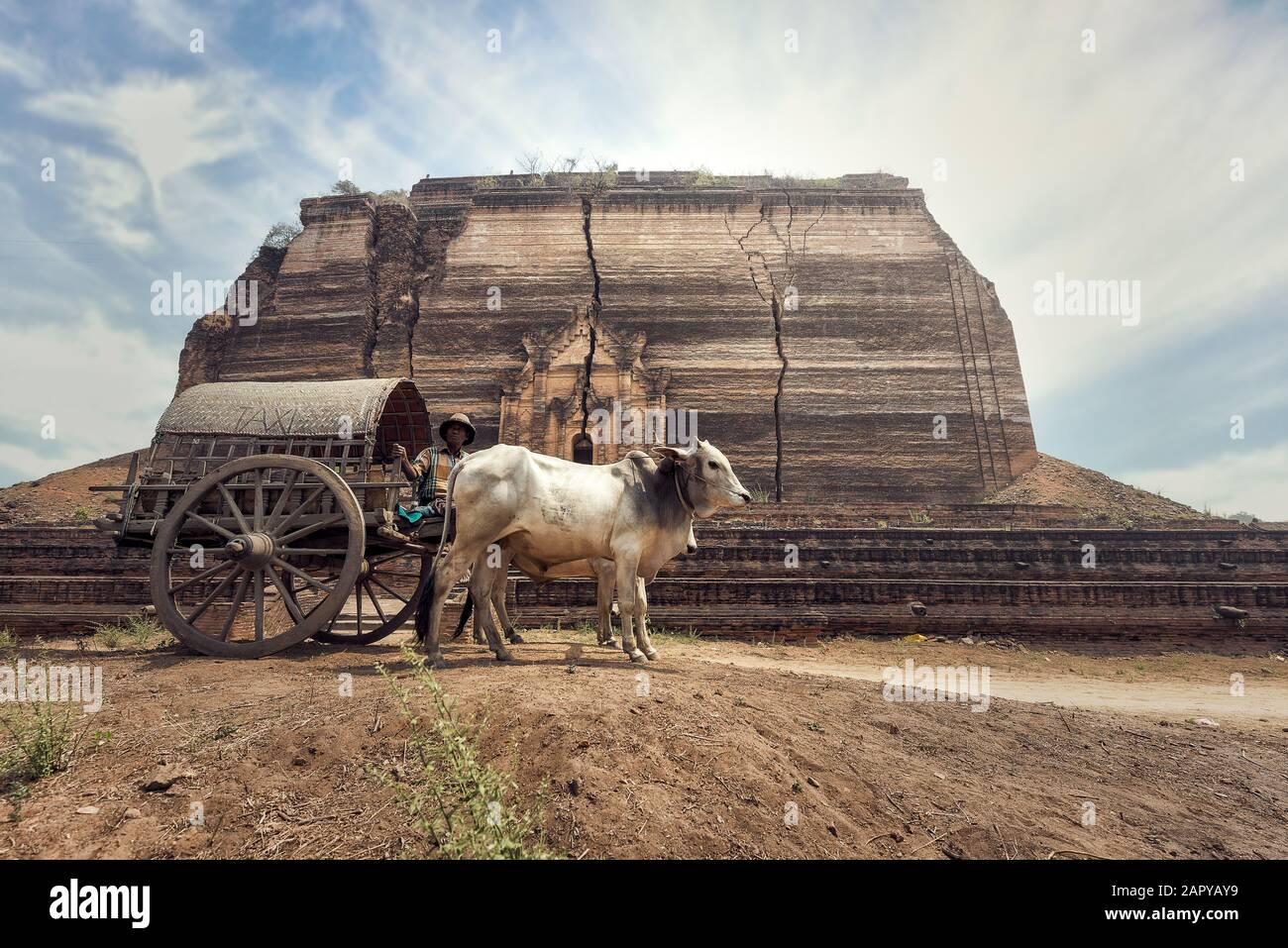 El hombre rural birmana conduce carro de madera con vida de pueblo tradicional en Birmania campo Foto de stock