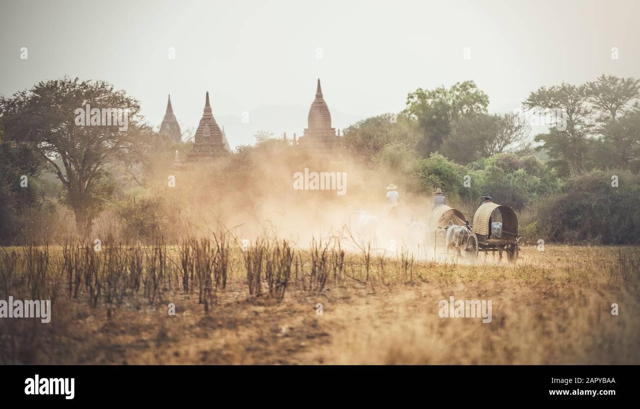 Hombre rural birmano que conduce carro de madera con heno en carretera polvoriento dibujado Foto de stock