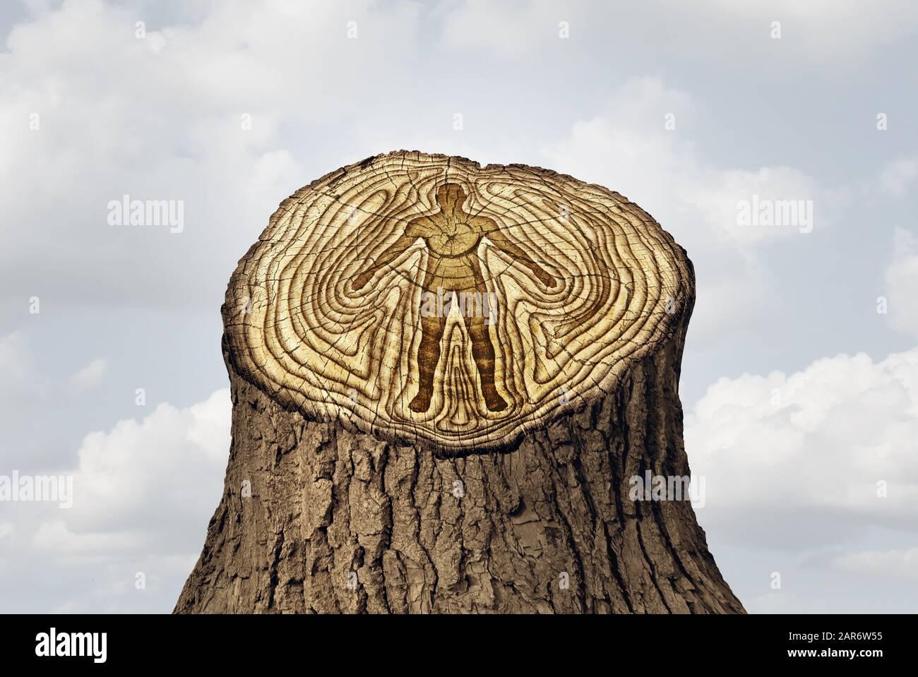 El envejecimiento o el envejecimiento como un joven y la edad avanzada cambia el concepto y un rejuvenecimiento como un ciclo de vida y la idea de salud humana como anillos arbóreos. Foto de stock