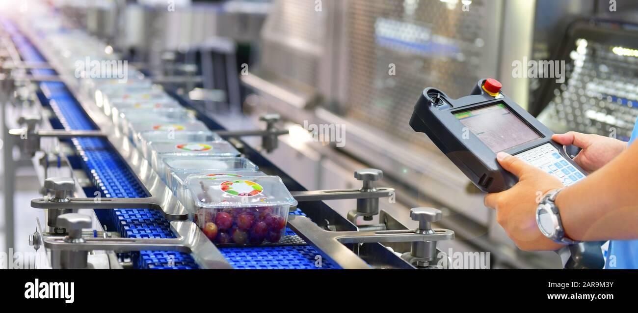 Control y control de automatización Productos alimenticios boxes transferencia en sistemas transportadores automáticos en fábrica Foto de stock
