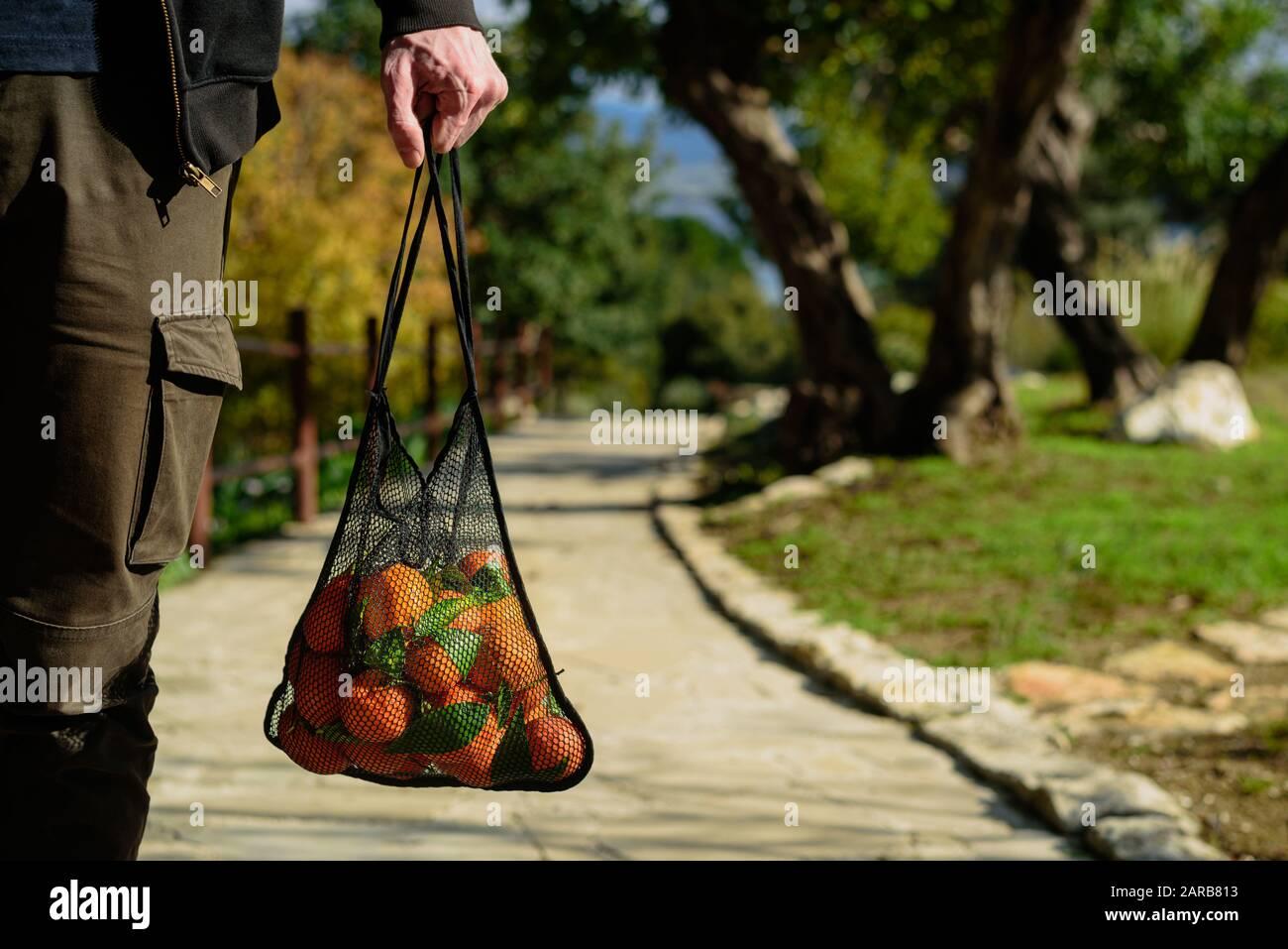 Hombre sosteniendo bolsa de malla reutilizable con naranjas recién recogidas. Concepto de cero residuos. Día soleado Foto de stock