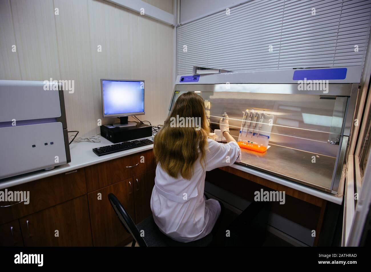 Trabajo científico en caja laminar. Pone muestras de fragmentos de ADN para electroforesis Foto de stock