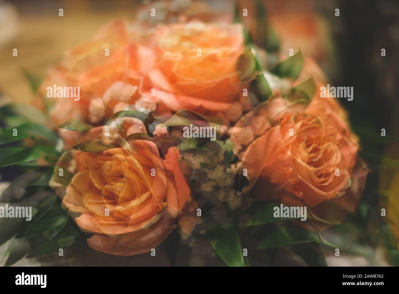 Ramo de rosas con fondo abstracto de doble exposición. Flores borrosas Foto de stock