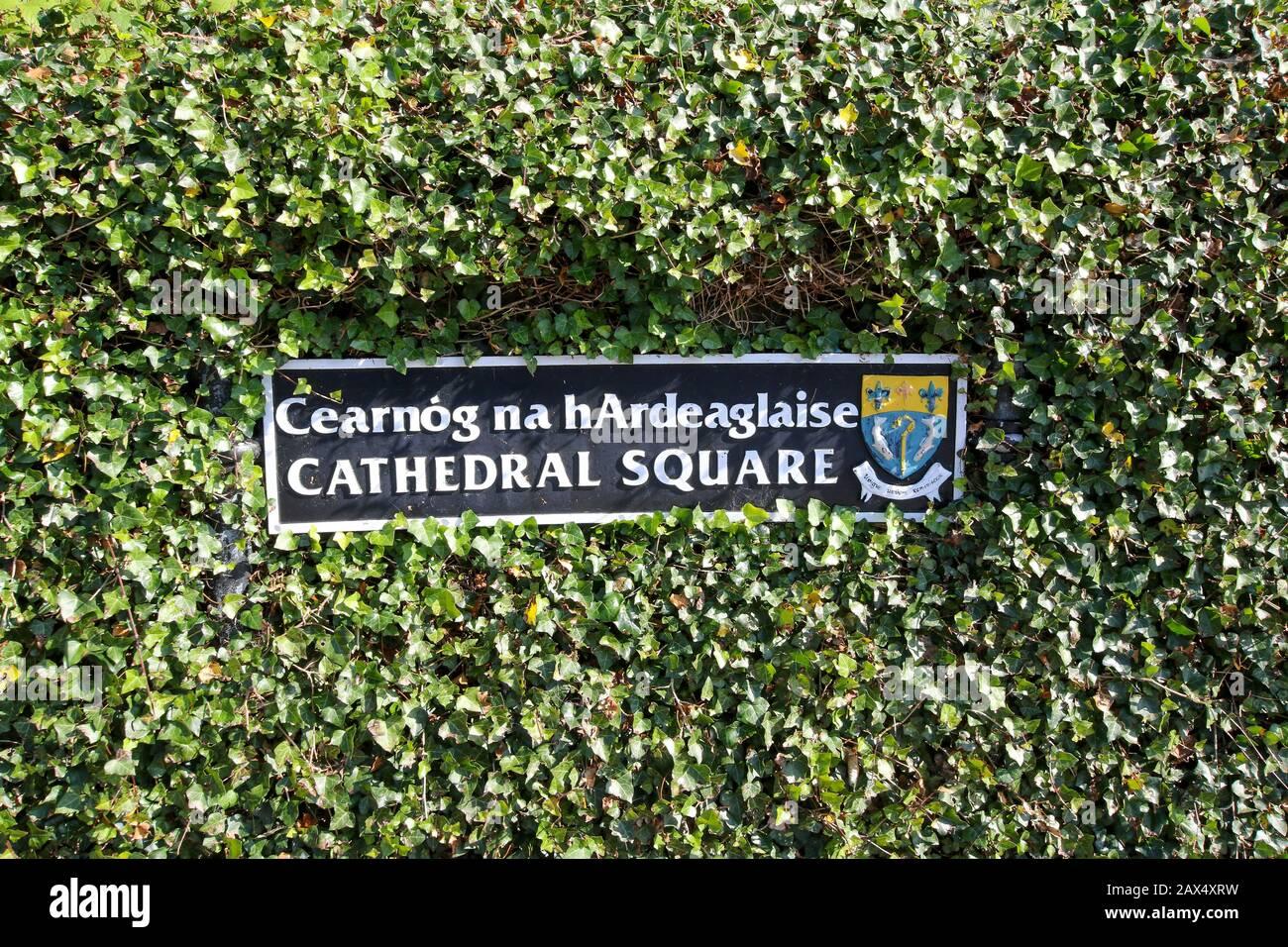 Un cartel de metal ornamentado en una cubierta de hiedra en Irlanda con escudo del consejo del condado de armas en Cathedral Square, Letterkenny, Condado de Donegal Irlanda. Foto de stock