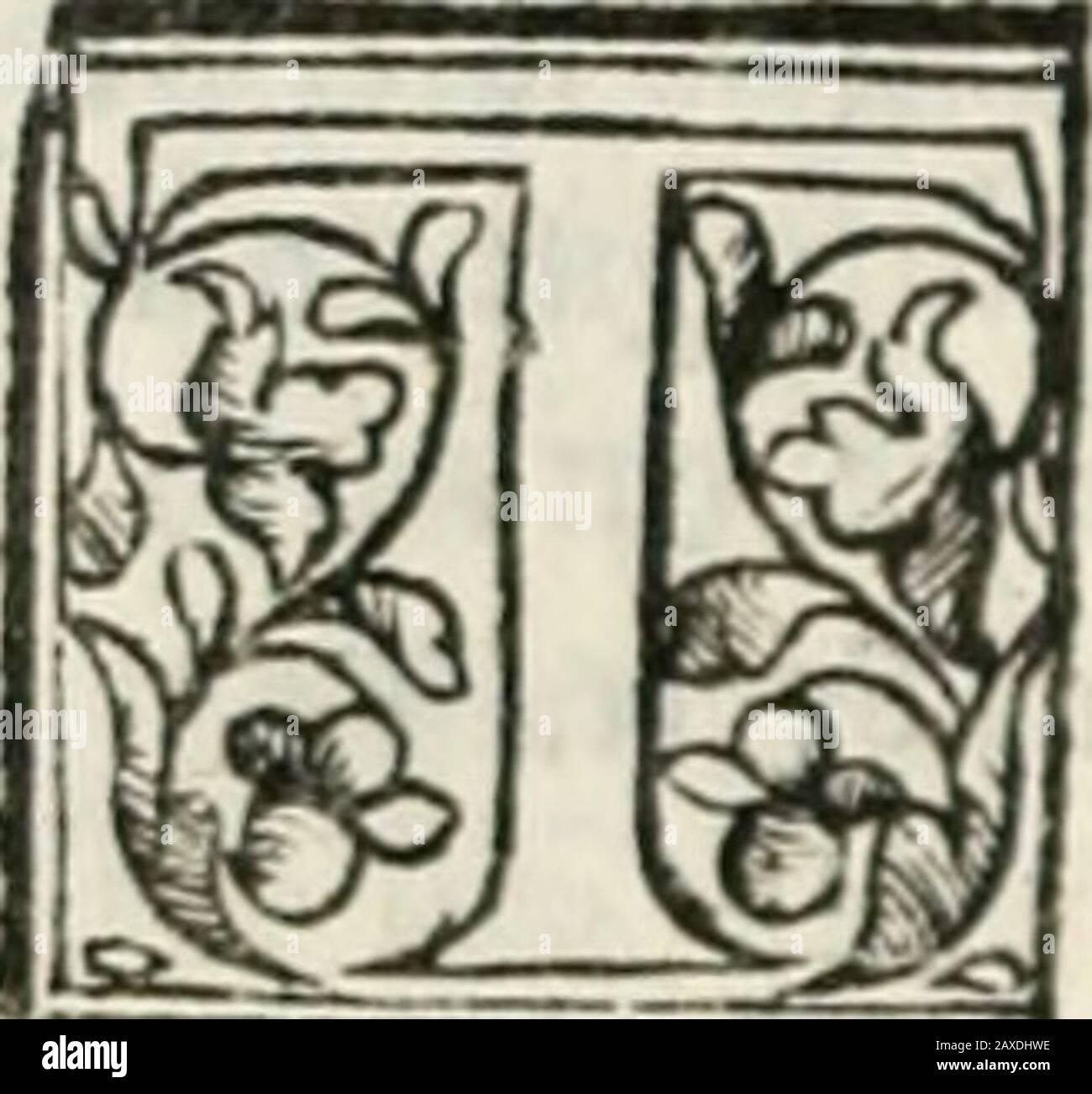 Geneologia de gli dei : i qvin decii libri . JESILCEO, MELWMT o,Er Euioto figliuoli d* Jesús 4. VtìifuYono figli dAtrco. /i cerne ajjinnd Cicerone nelle mture diiiicluali dicc,che dppreffo Greco furono annouerciti trd i i difcorti:ilche mditio,chefò!]cro huominifamofrjjendo dirjli fiato Cafìcre.et Pollpartiuce IBSTE chegencròTuta FIGT Hrffìf Uippcdamidiiìqudk jìdti Onde hiucdefcppcrtato daljrdtello le co/e dette j am. Deràdo farne ucMta dr Foto de stock