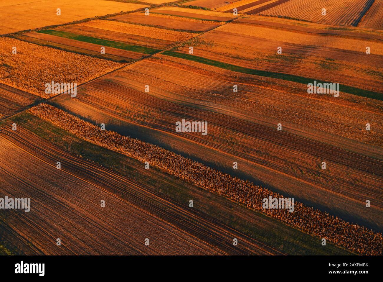 Colorido paisaje mosaico antecedentes, campo agrícola cultivada como patrón abstracto en otoño de puesta de sol, vista aérea de drone POV Foto de stock