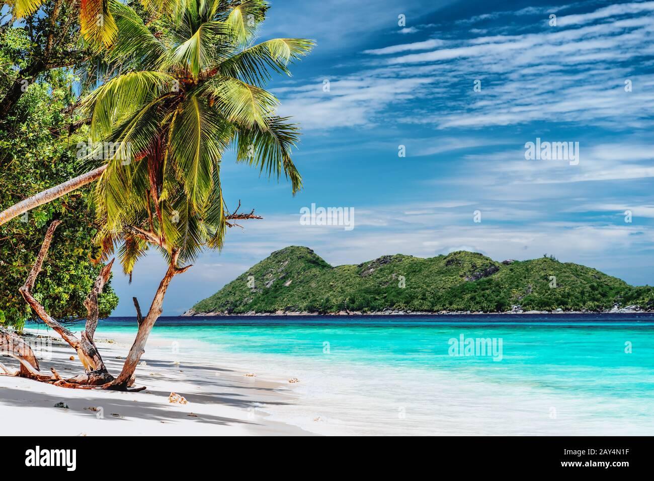 Ambiente de vacaciones de lujo en la isla tropical. Playa paradisíaca con arena blanca y palmeras. Concepto de escapada turística de larga distancia Foto de stock