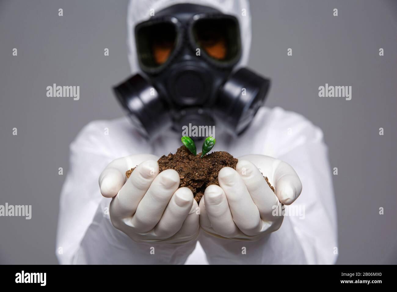 Gas Mask Plant Imgenes De Stock  Gas Mask Plant Fotos De Stock