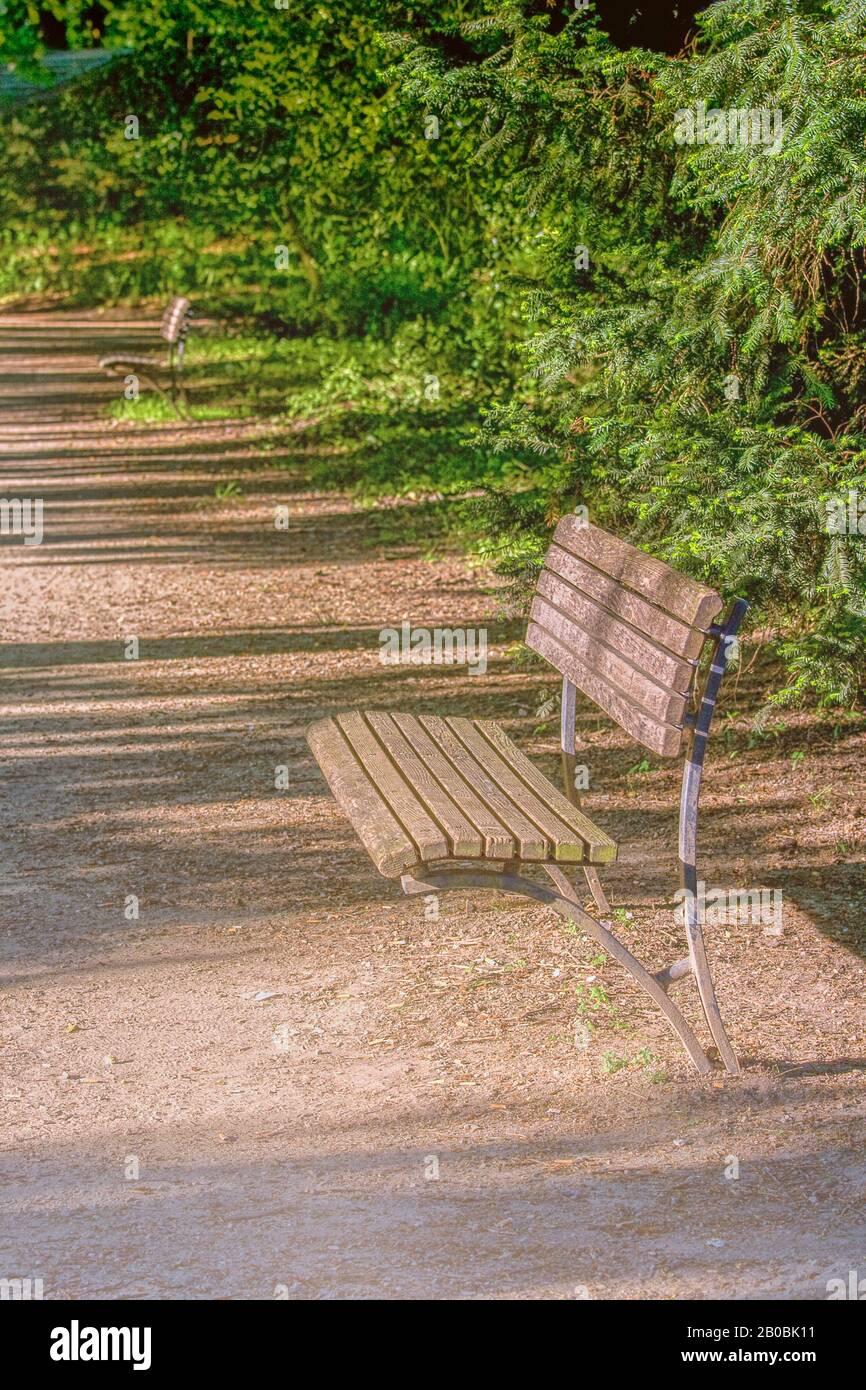 luz del sol brillando sobre banco de madera en el parque con Foto de stock