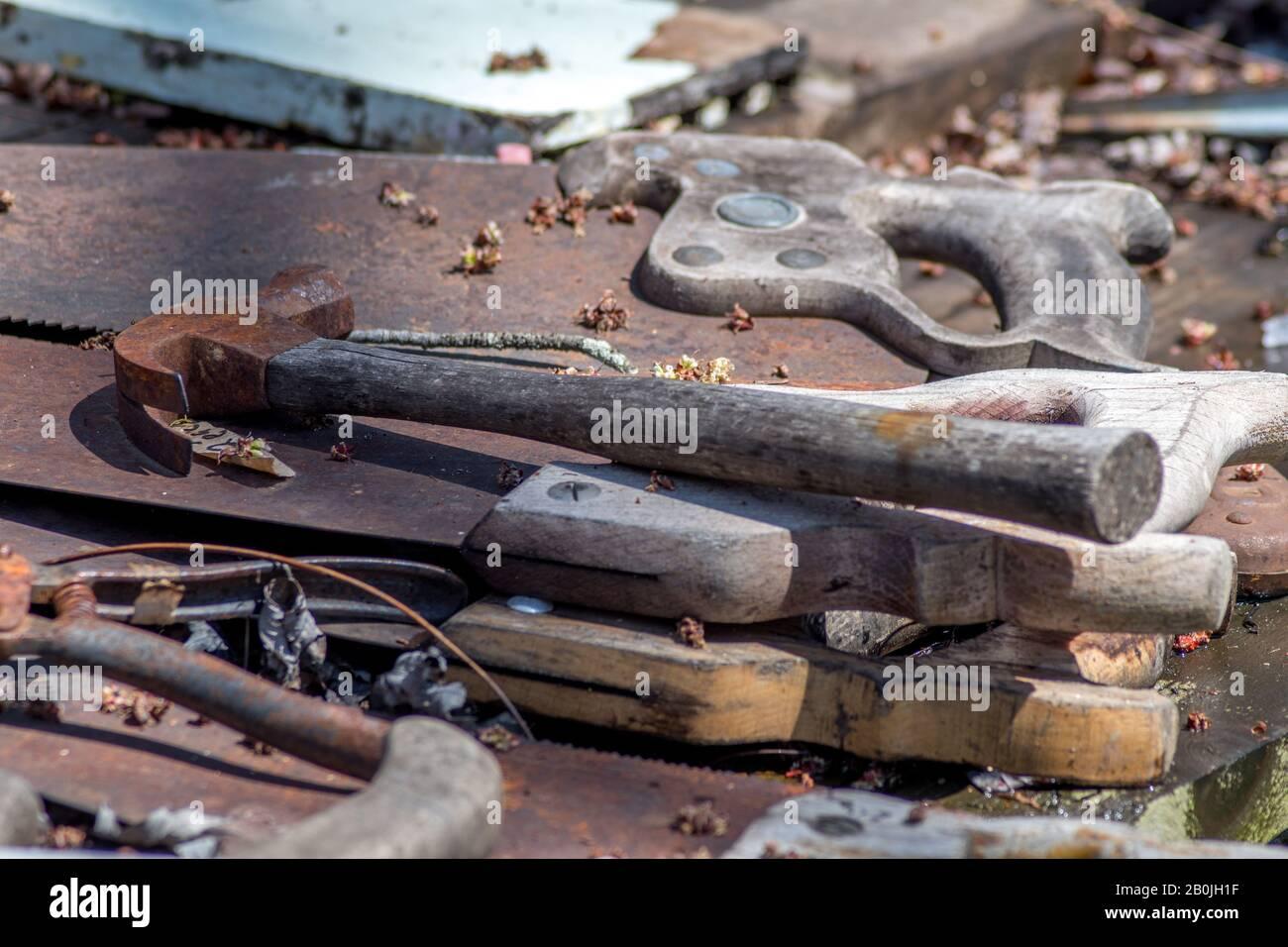 Las herramientas antiguas se olvidan al aire libre en una mesa cubierta de hojas Foto de stock