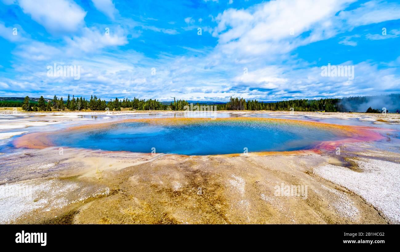El agua de color turquesa del géiser de la piscina turquesa en el Parque Nacional Yellowstone, Wyoming, Estados Unidos Foto de stock