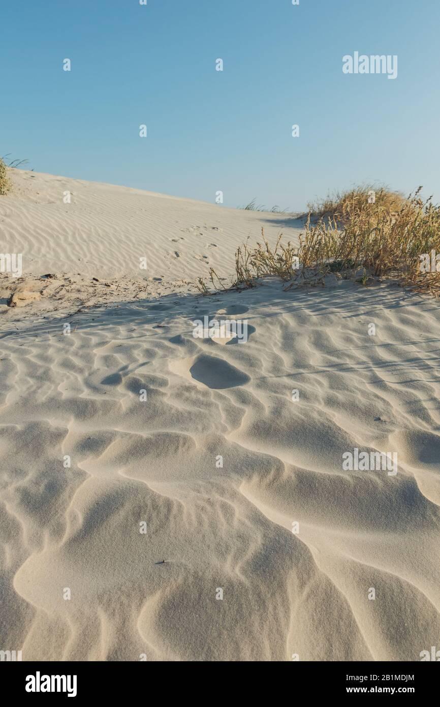 Olas en las dunas de arena por la tarde, Jekyll Island, Georgia. Foto de stock